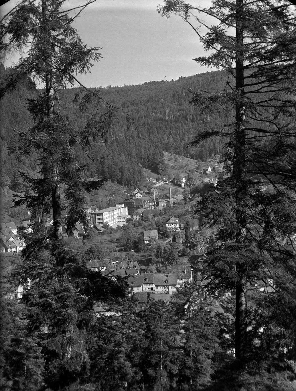 Dokumentation Wildbad und Calmbach (2), Nr 001