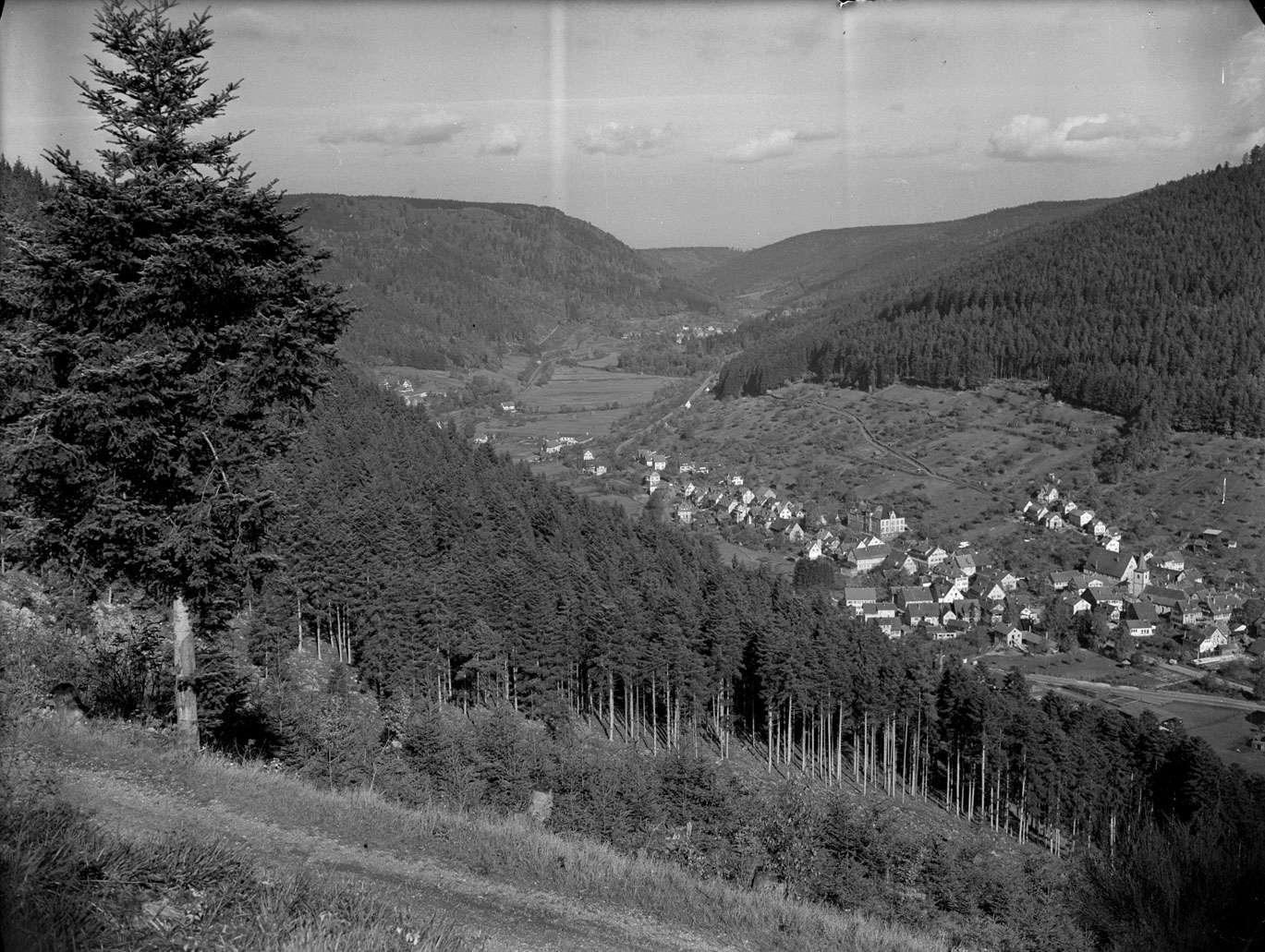 Dokumentation Wildbad und Calmbach (2), Nr 003