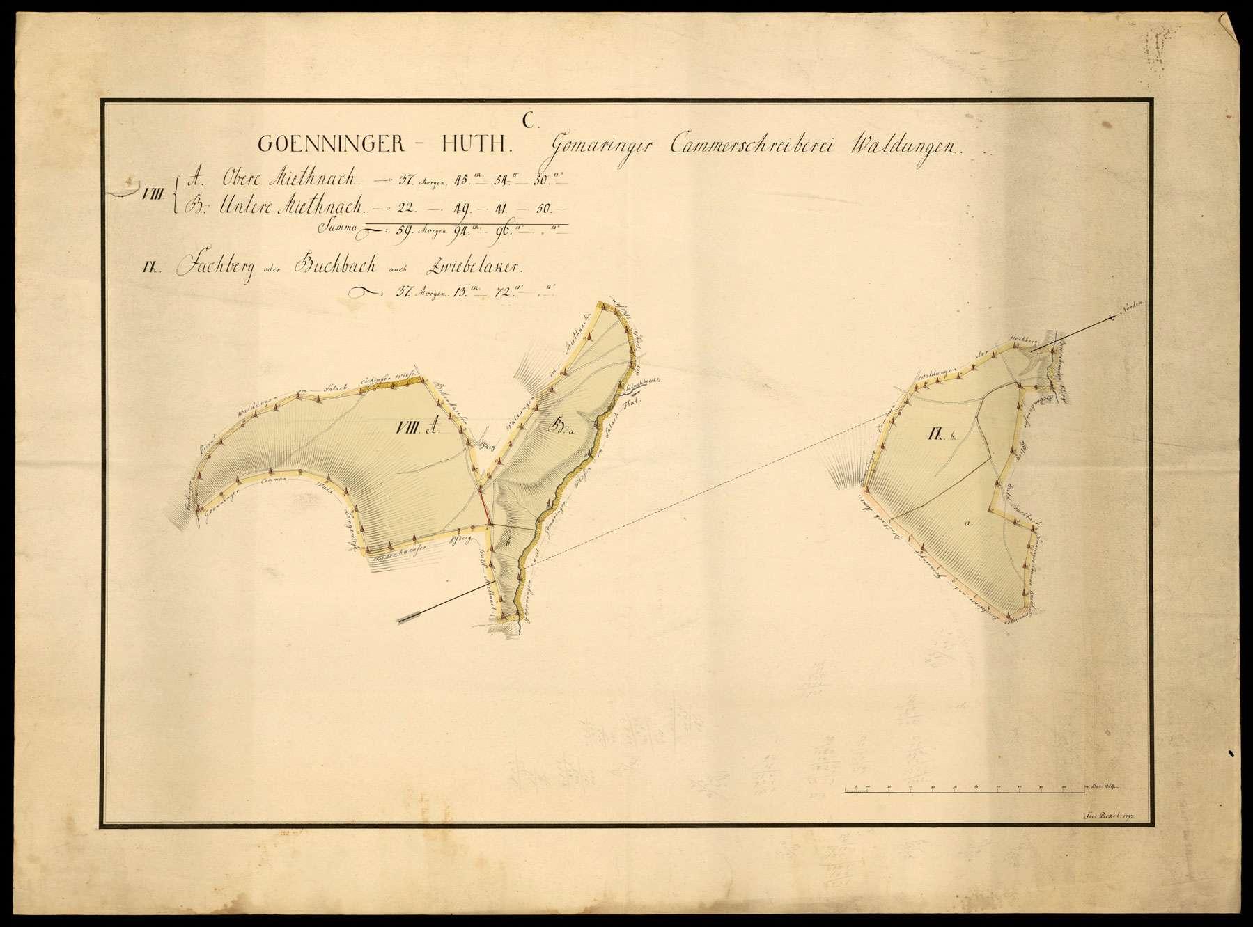 """""""Gönninger Hut: Gomaringer Kammerschreiberei Waldungen"""" [C VIII. A. Obere Miethnach, B. Untere Miethnach, IX. Fachberg oder Buchbach, auch Zwiebelacker], Bild 1"""