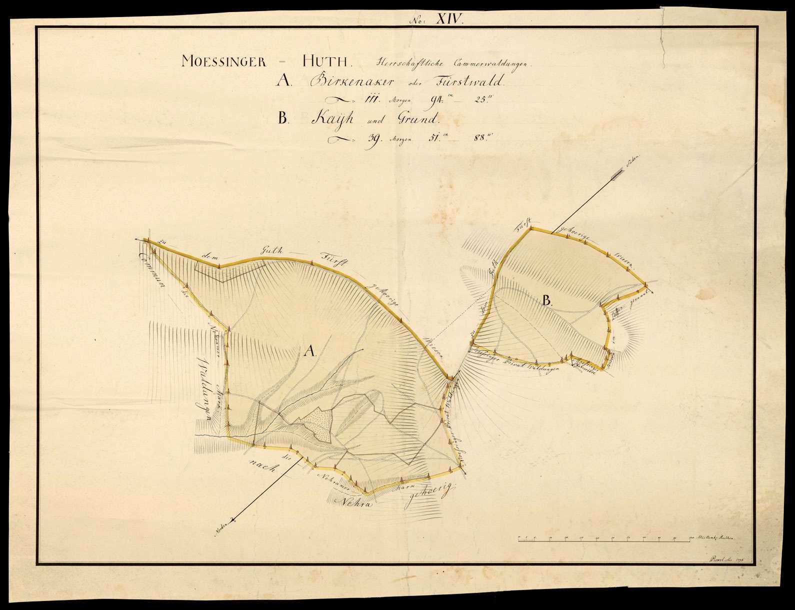"""""""Mössinger Hut: herrschaftliche Kammerwaldungen"""" [No: XIV A. Birkenacker oder Fürstwald und B. Kayh und Grund], Bild 1"""