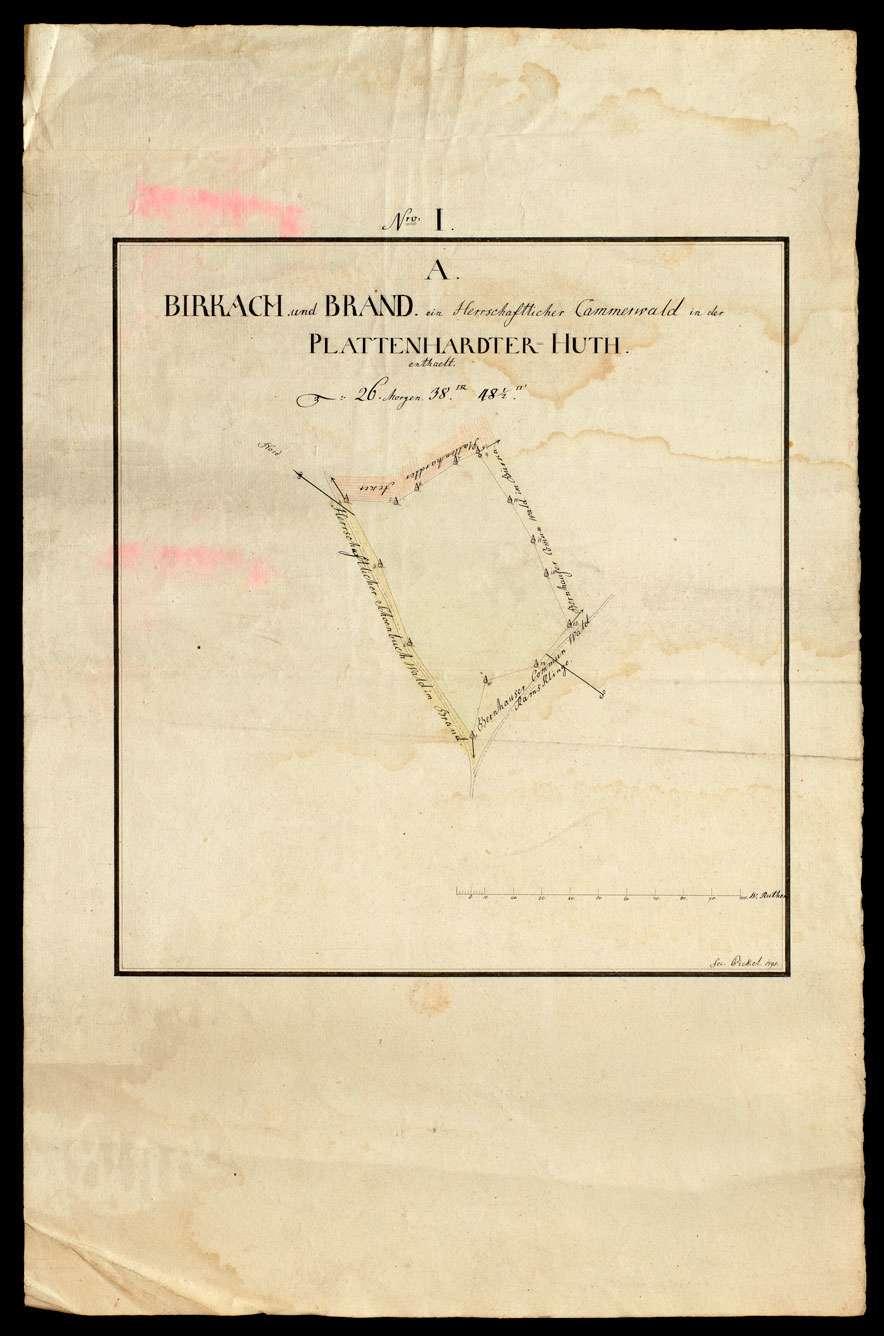 [Plattenhardter Hut: herrschaftlicher Kammerwald Nro. I A Birkach und Brand], Bild 1