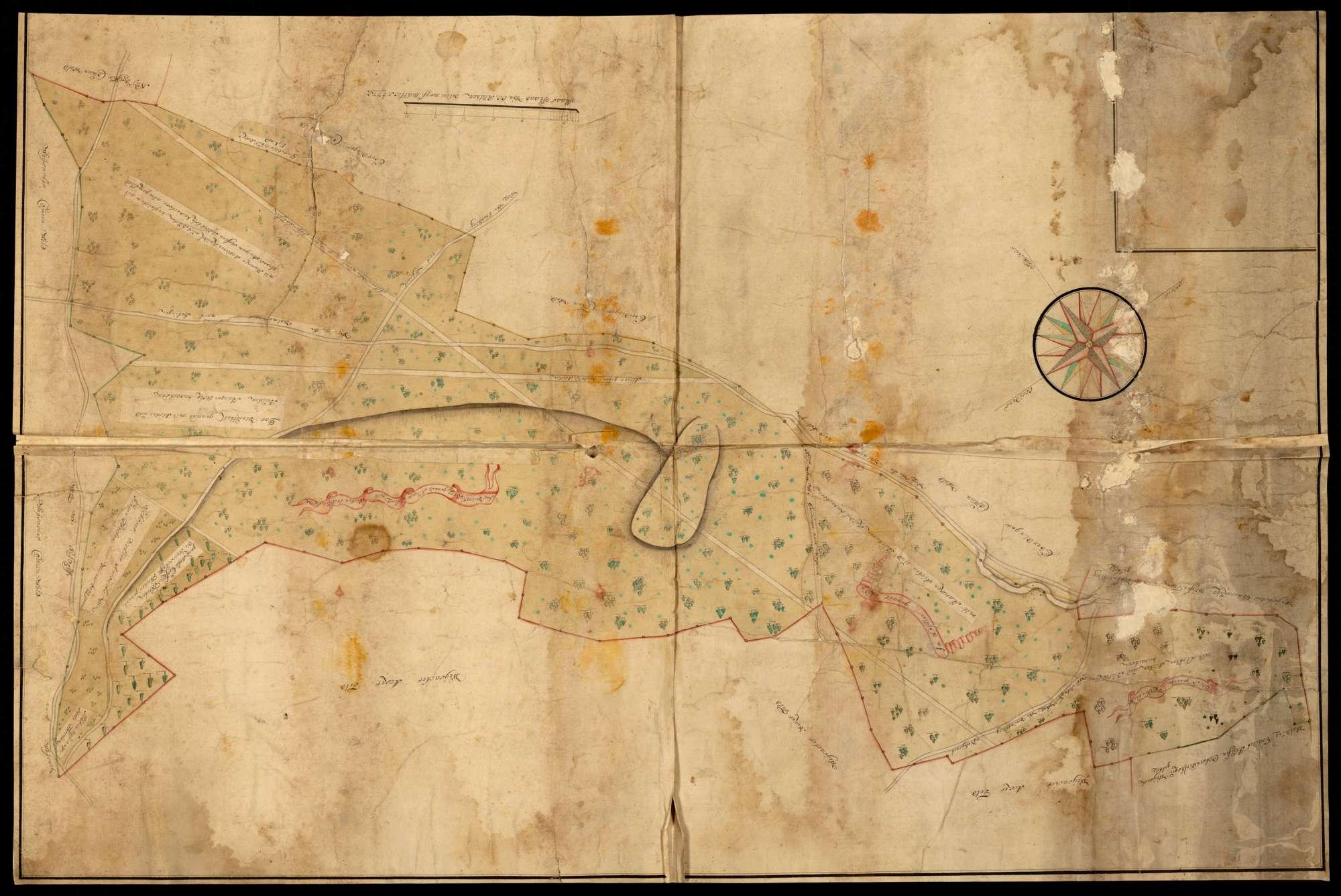 o.T. [Waldungen bei Eberdingen und Weissach: Kapfenhardt, im Löchle, im Hühnerberg, genannt junger Schlag], Bild 1