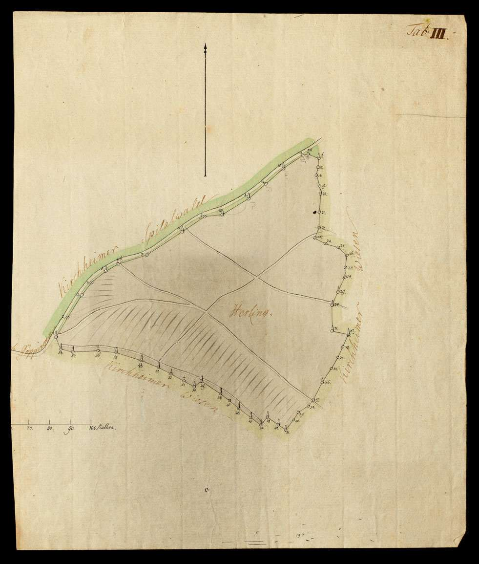 [Tab. III Der zur Klosterhofmeisterei Kirchheim gehörige Wald Herling], Bild 1