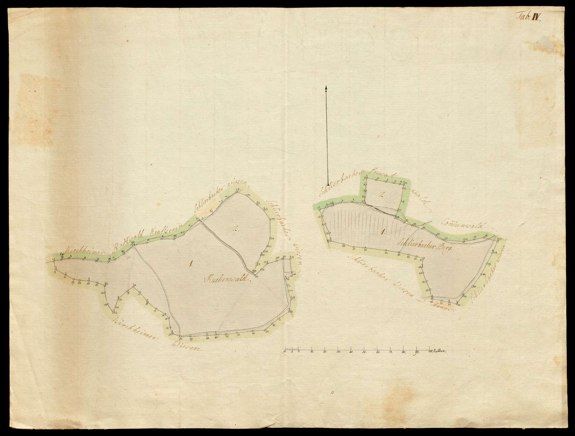 o.T. [Waldungen des Klosters Kirchheim: Tab. IV Ruchenwald und Schlierbacher Berg], Bild 1