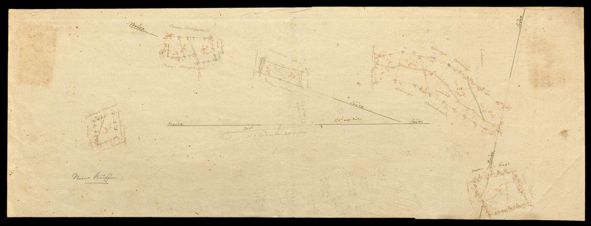 o.T. [Revier Neuffen: fünf Waldungen des Klosters Kirchheim, drei nicht näher bezeichnet, eine namens Buttendobel und eine namens Erlenspitz], Bild 1