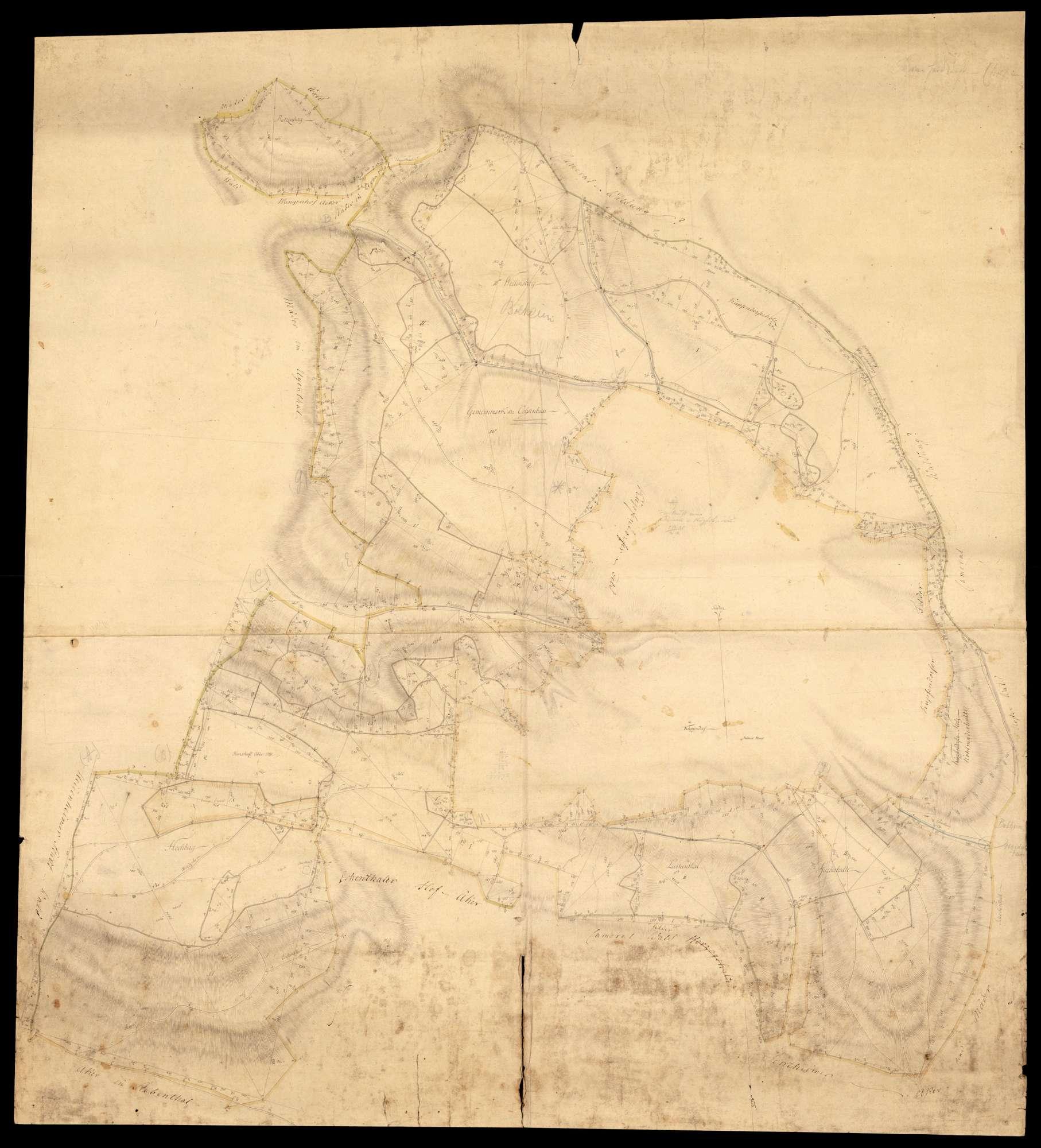 """""""Königsbronner Klosterwaldungen: Steinheimer II. Hut"""" (Rückseitentitel), Bild 1"""