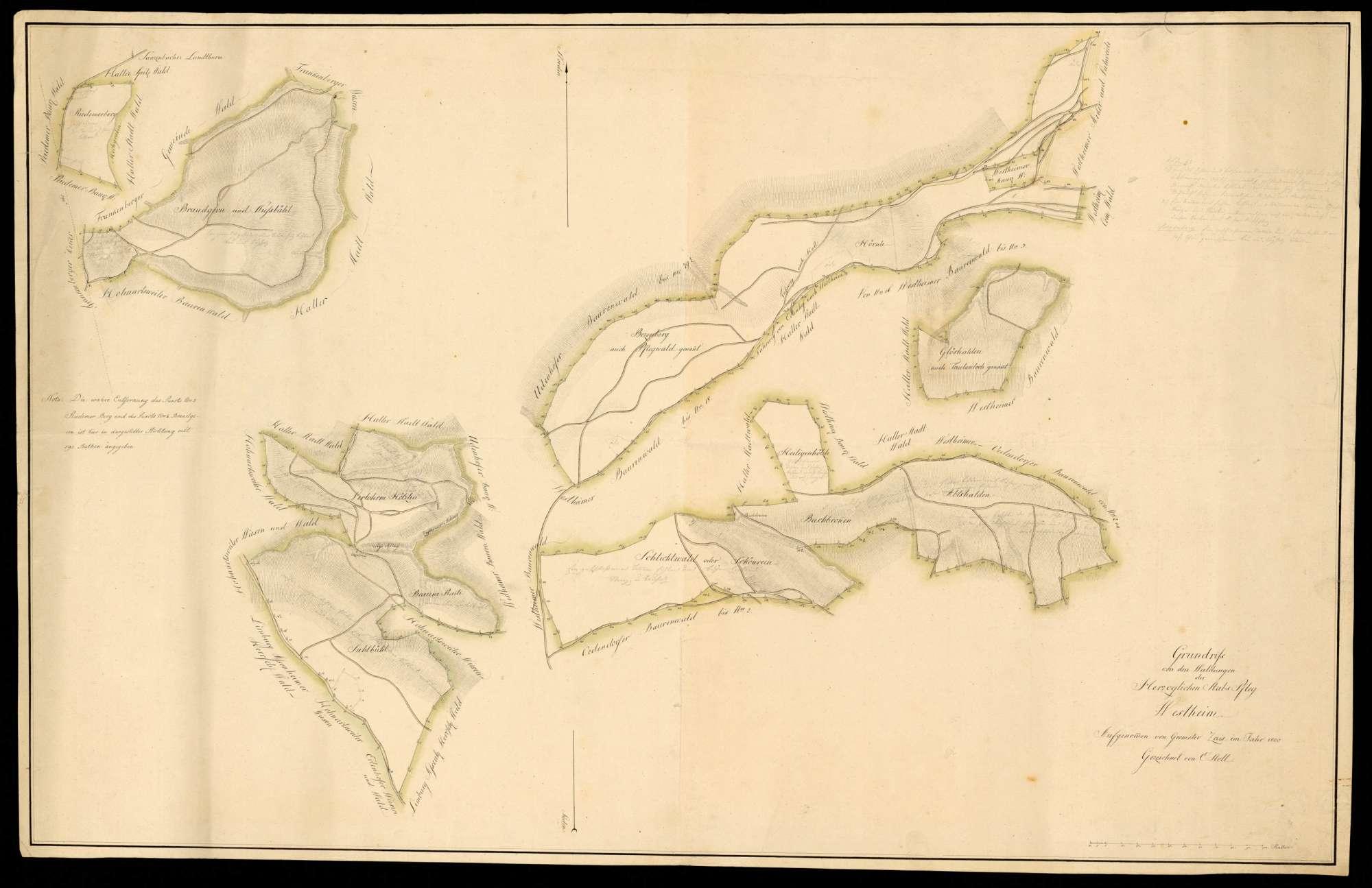 """""""Grundriss von den Waldungen der herzoglichen Stabspflege Westheim aufgenommen von Geometer Zais im Jahre 1800, gezeichnet von E. Stoll"""", Bild 1"""