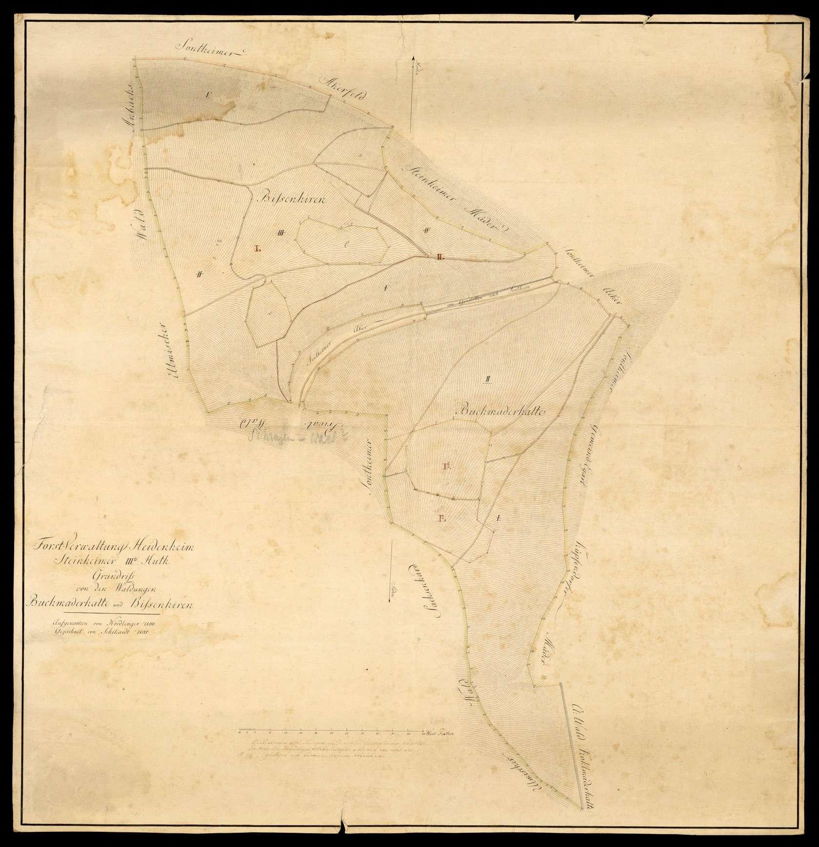 """""""Forstverwaltung Heidenheim: Steinheimer IIIte Hut. Grundriss von den Waldungen Buchmaderhalte und Bissenhirren. Aufgenommen von Nördlinger 1800, gezeichnet von Schickardt 1805"""", Bild 1"""