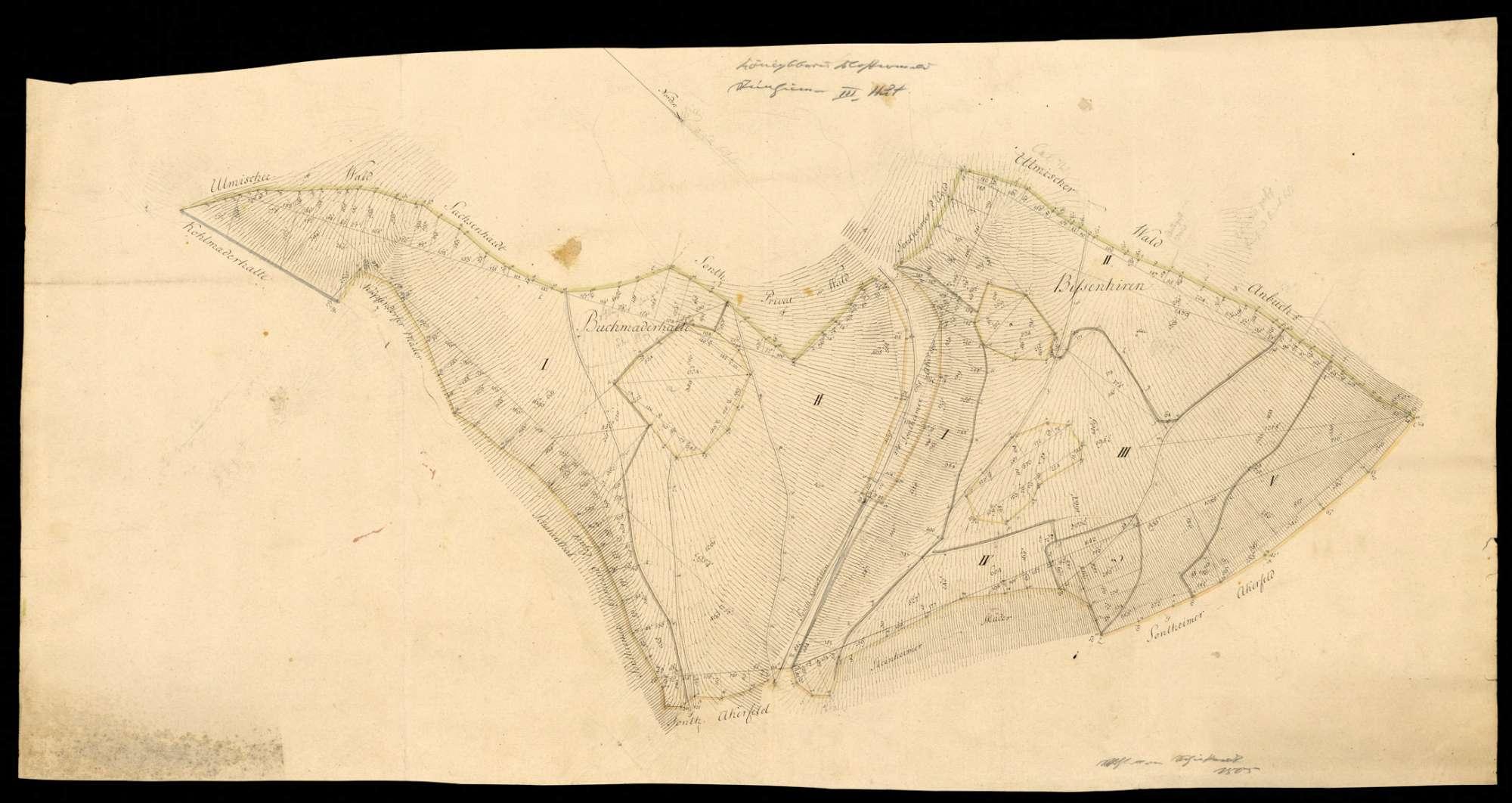 """""""Königsbronner Klosterwald: Steinheimer III. Hut"""" [Waldungen Buchmaderhalte und Bissenhirren], Bild 1"""