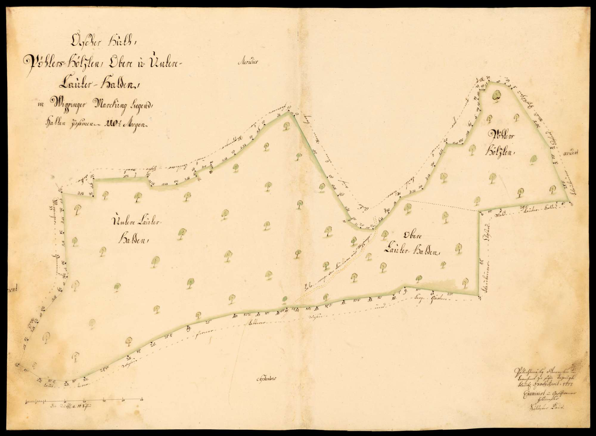 """[Kloster Blaubeuren:] """"Ascher Hut, Pöhlers-Hölzlen, obere und untere Lauter-Halden, in Wippinger Markung liegend"""", Bild 1"""