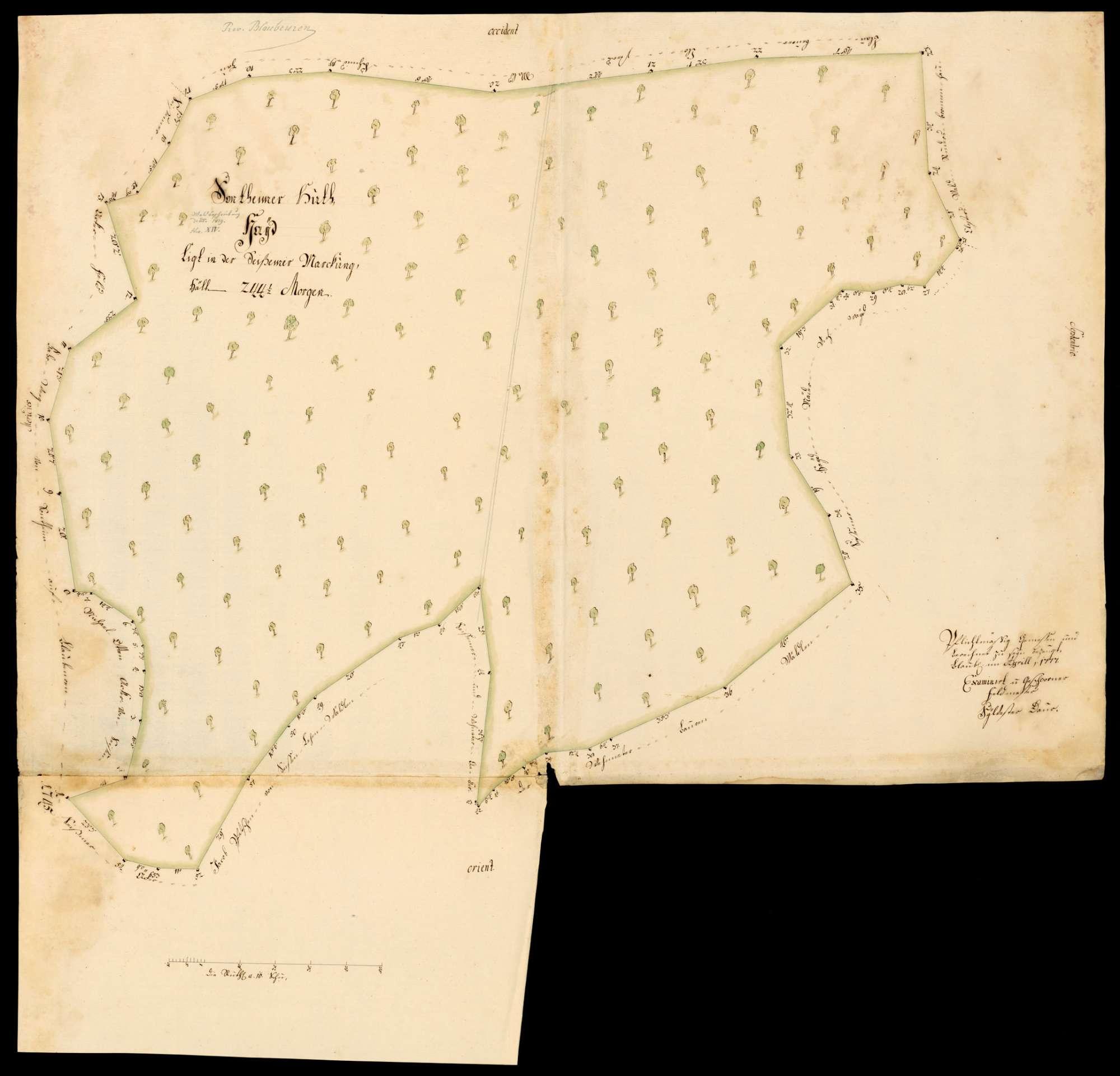 """[Kloster Blaubeuren:] """"Sontheimer Hut, Hayd, liegt in der Seissemer Markung"""", Bild 1"""
