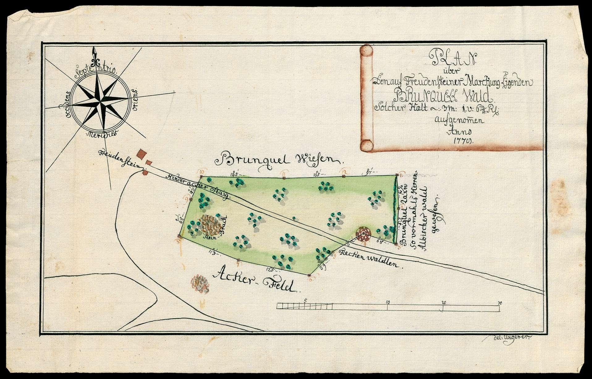 """""""Plan über den auf Freudensteiner Markung liegenden Brunnquellwald ... aufgenommen 1779"""" [Maulbronner Hut], Bild 1"""