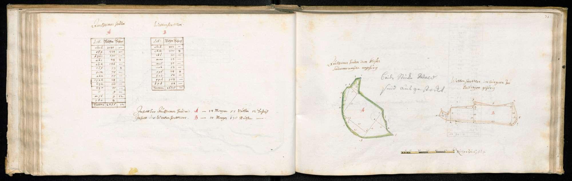 """Ruiter Hut: """"Auchheimer Heulen, dem Kloster Salomonsweiler [Salem] angehörig und Wetterhertlin, den Bürgern zu Nellingen gehörig"""", Bild 1"""