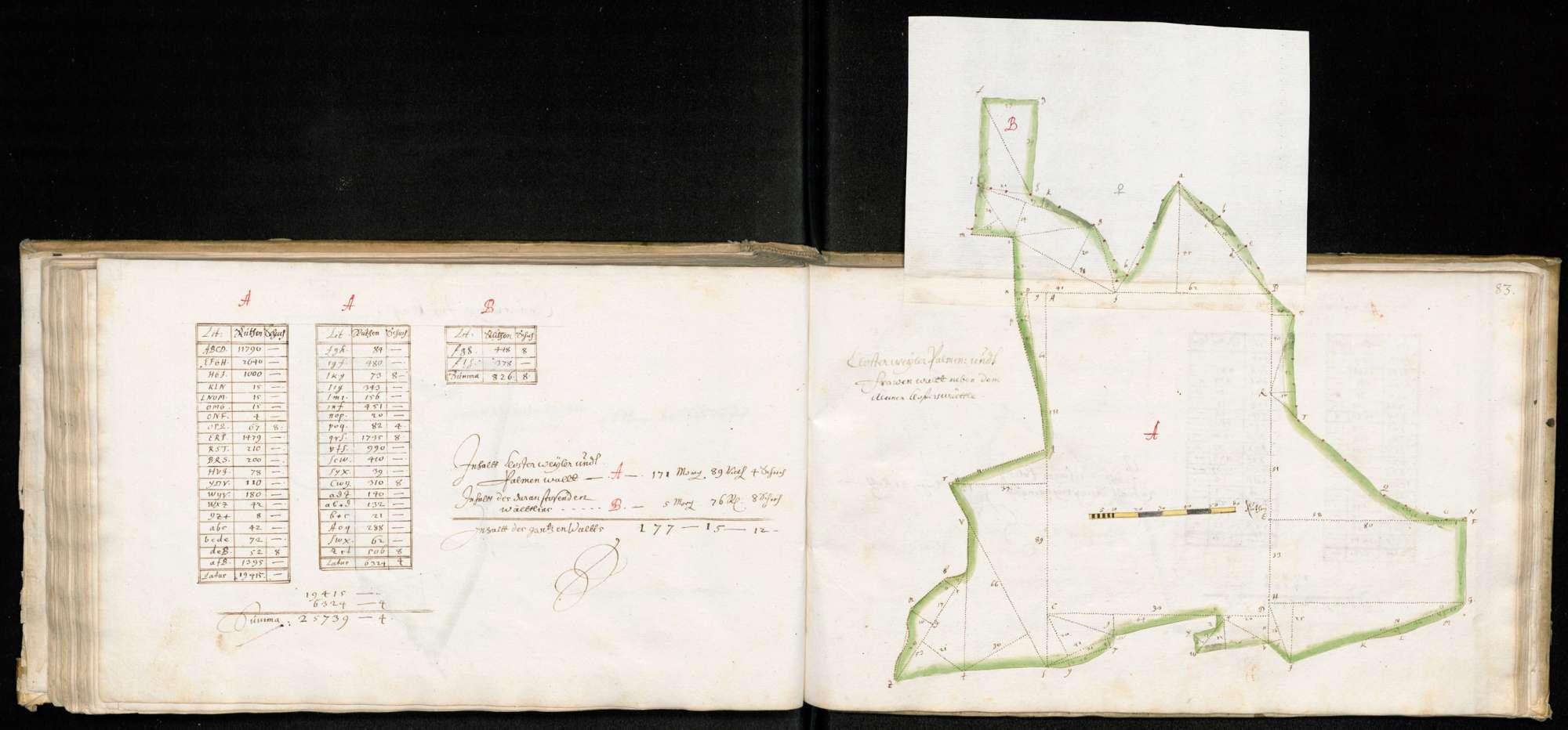 """Ruiter Hut: """"Kloster Weiler Palmen- und Frauenwald"""", Bild 1"""