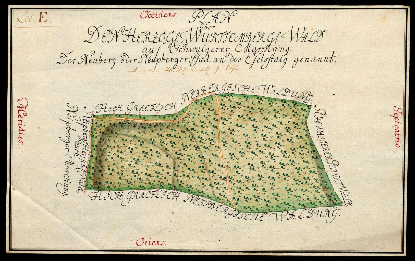 """""""Plan über den herzoglich württembergischen Wald auf Schwaigerer Markung, der Neuberg oder Neupberger Pfad an der Eselstaig genannt"""", Bild 1"""