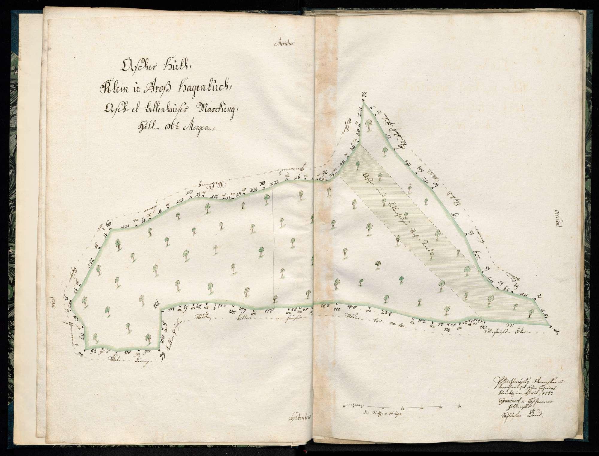 """""""Ascher Hut, Lemppeler Hau, liegt in Asch- und Bühlenhäuser Markung"""", Bild 1"""