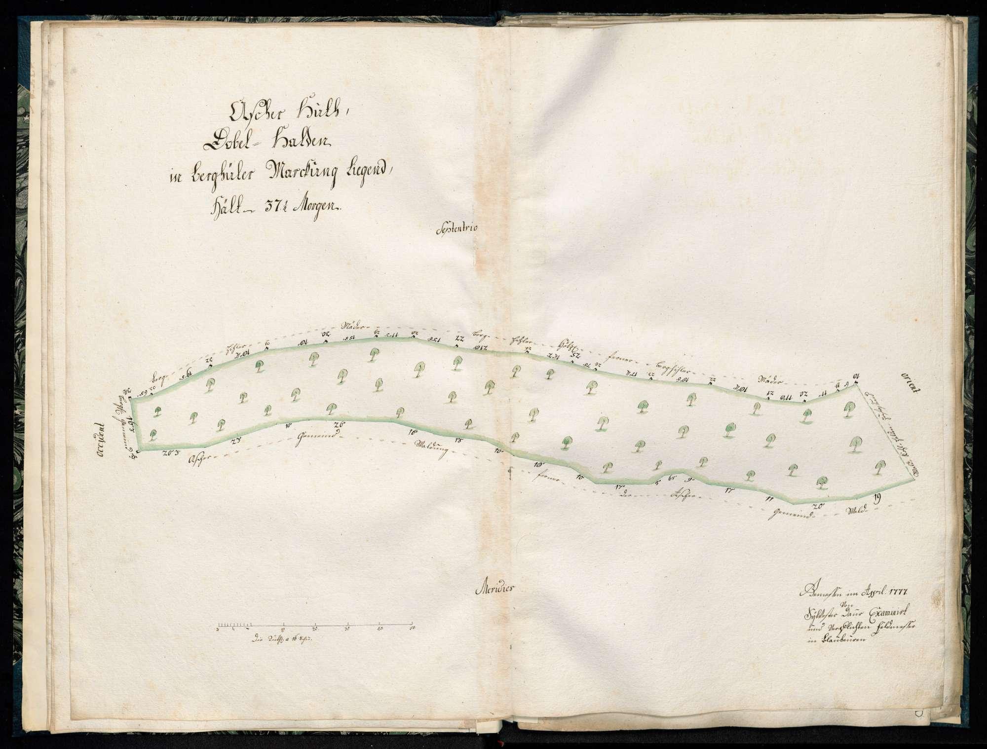 """""""Ascher Hut, Klein- und Großhagenbuch, Asch- et Bühlenhäuser Markung"""", Bild 1"""