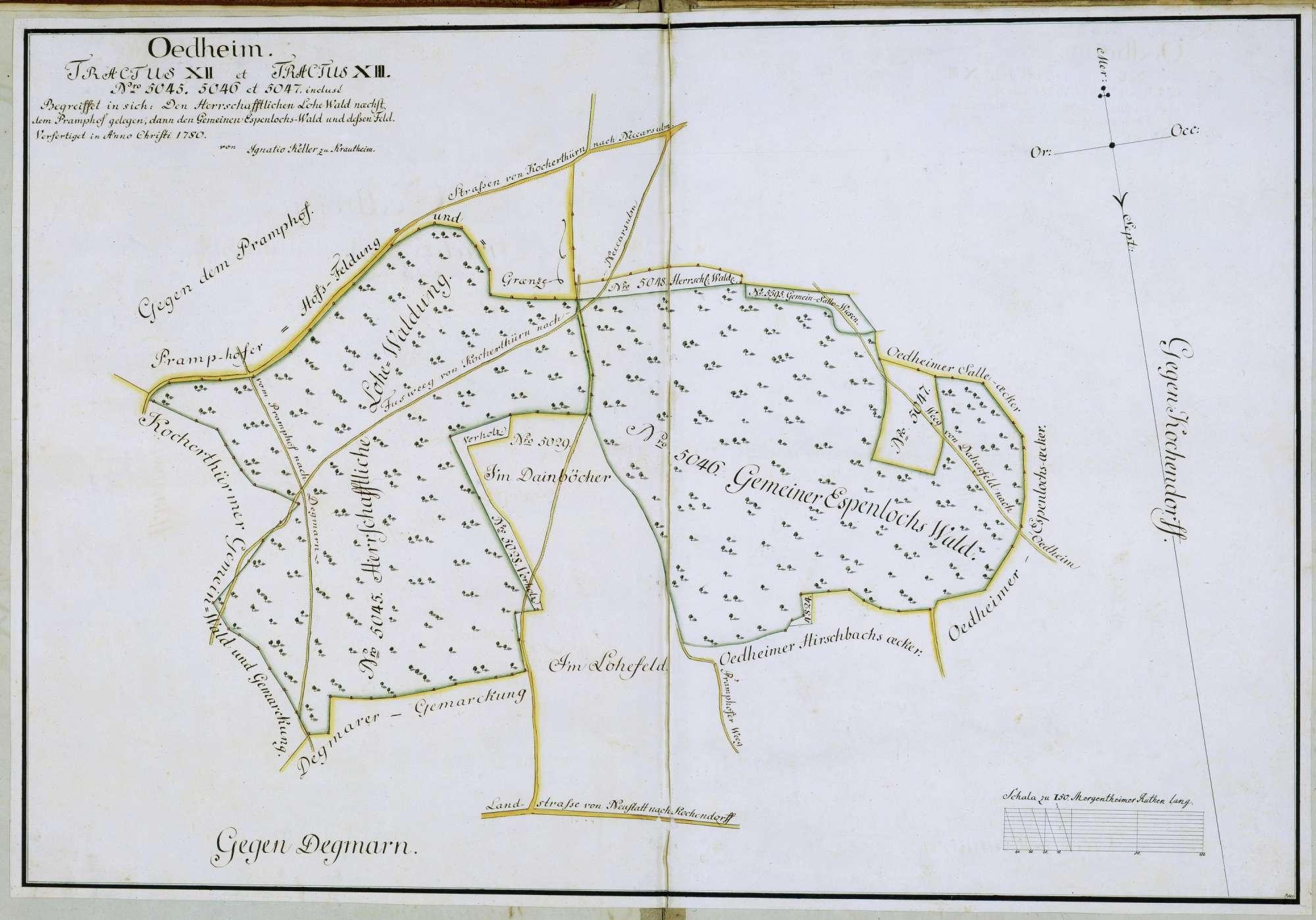 """Tractus XII et Tractus XIII: """"N(ume)ro 5045, 5046 und 5047 incluse: begreifet in sich den herrschaftlichen Lohe-Wald, dann den Gemeinen Espenlochswald und dessen Feld"""", Bild 1"""