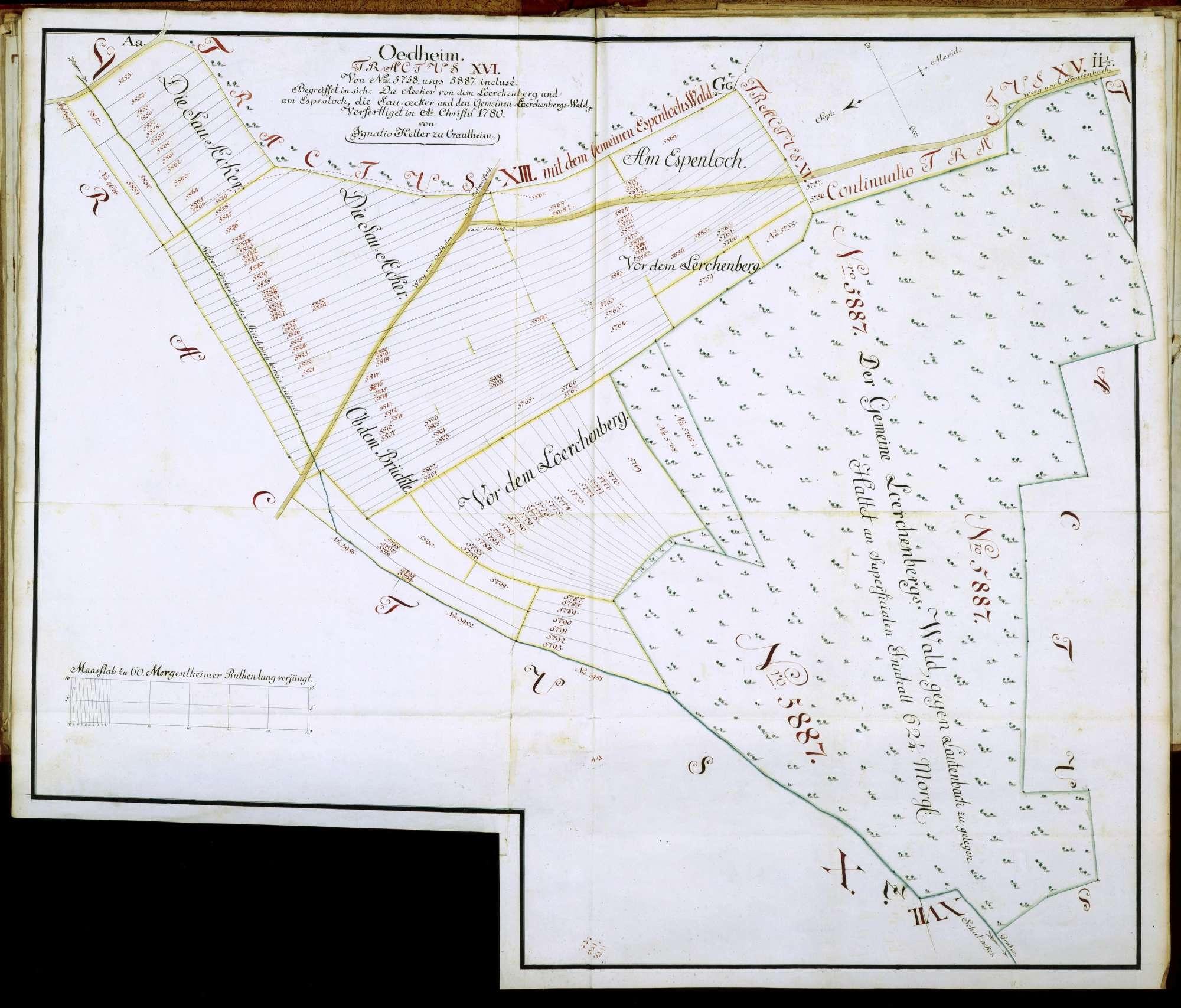 """Tractus XVI: """"Von N(ume)ro 5758 usqu(e) 5887 incluse begreiffet in sich die Aecker von dem Loerchenberg und am Espenloch, die Sauaecker und den gemeinen Loerchenbergswald"""", Bild 1"""