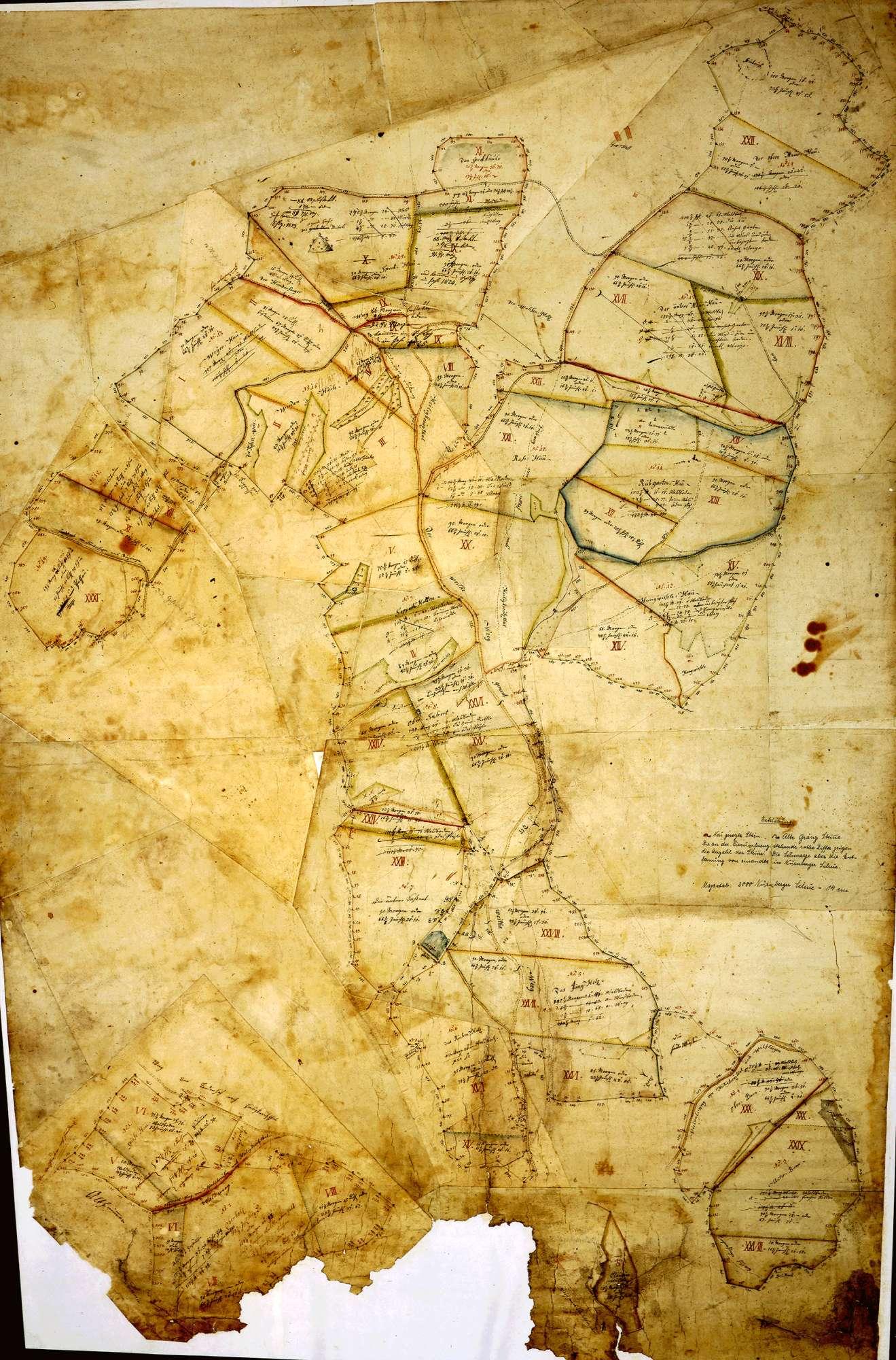 o. T. [General- und Spezialkarte über die königlich Württembergischen Waldungen bei Heiligkreuztal] [Titel der Ausfertigung zu dieser Karte (N 13 Nr. 12)], Bild 1