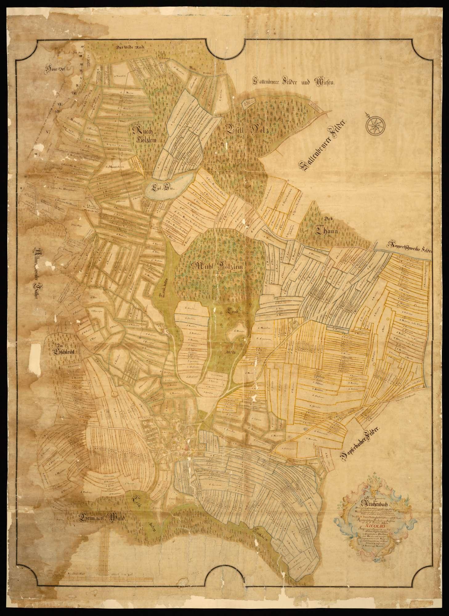 """Reichenbach """"Mappa Geometrica über Reichenbach ..."""", Bild 1"""