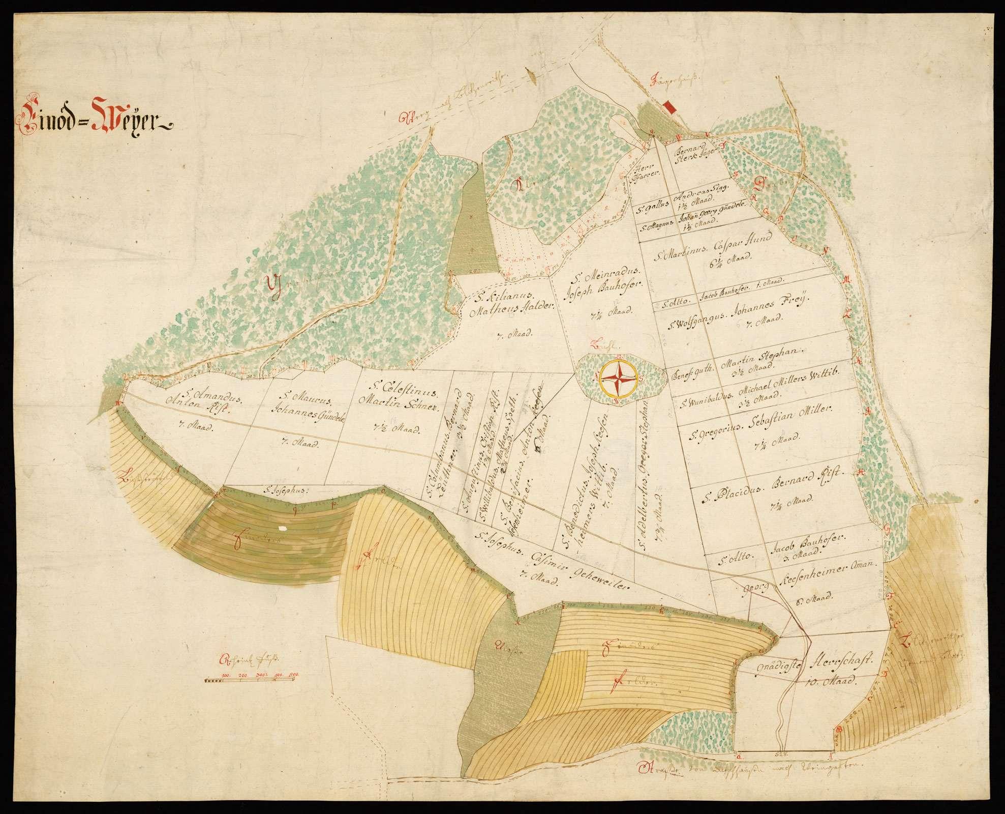 """""""Einöd Weyer"""" [Grundriss der Grundstücke bei Blitzenreute, genannt Einöd-Weyer], Bild 1"""