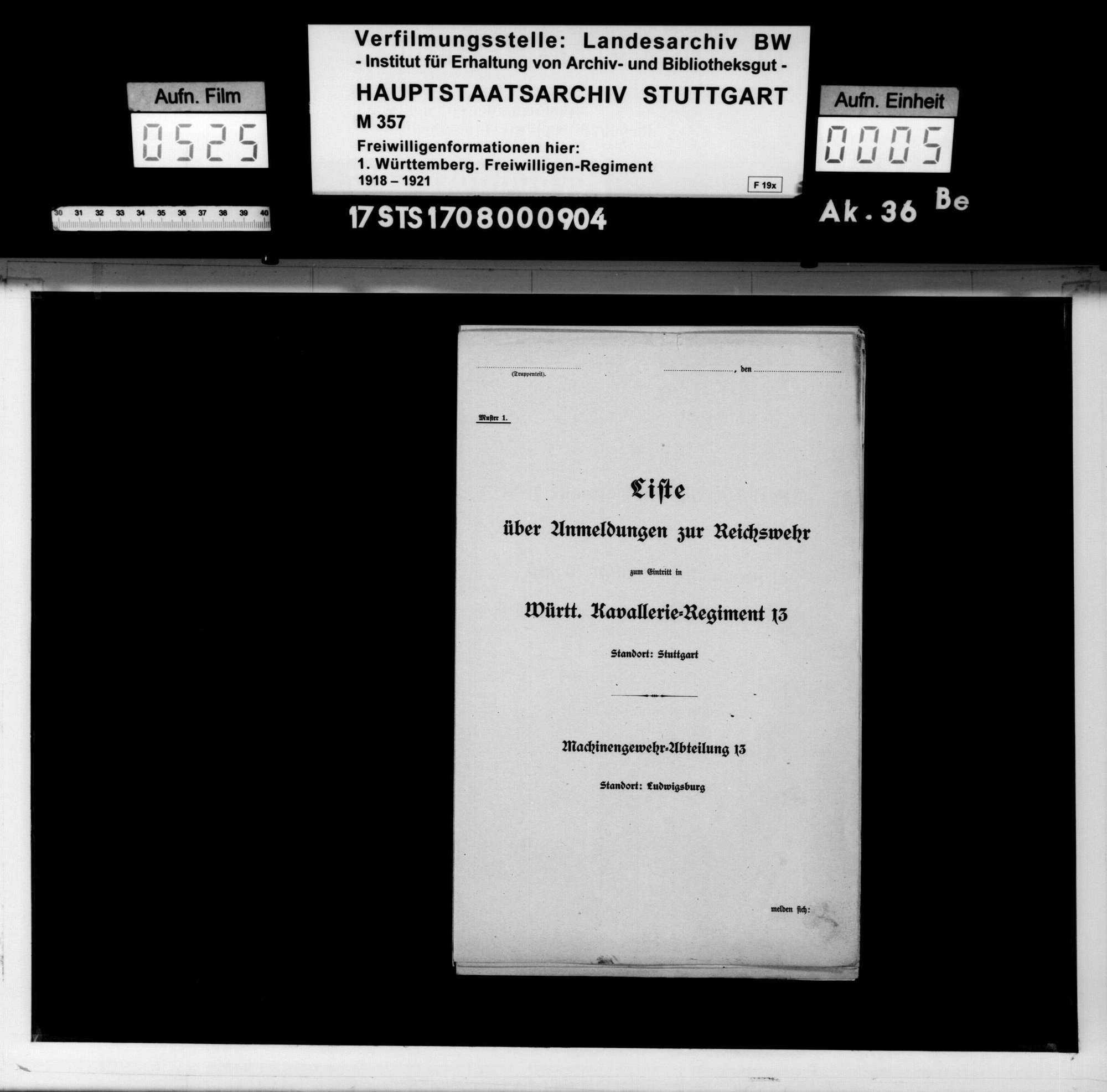 Listen über Anmeldungen zur Reichswehr zum Eintritt in Württ. Kavallerie-Regiment 13 (Maschinengewehr-Abteilung 13/Ludwigsburg, 1. Eskadron/Ludwigsburg, 1. Eskadron/Ulm), Bild 3