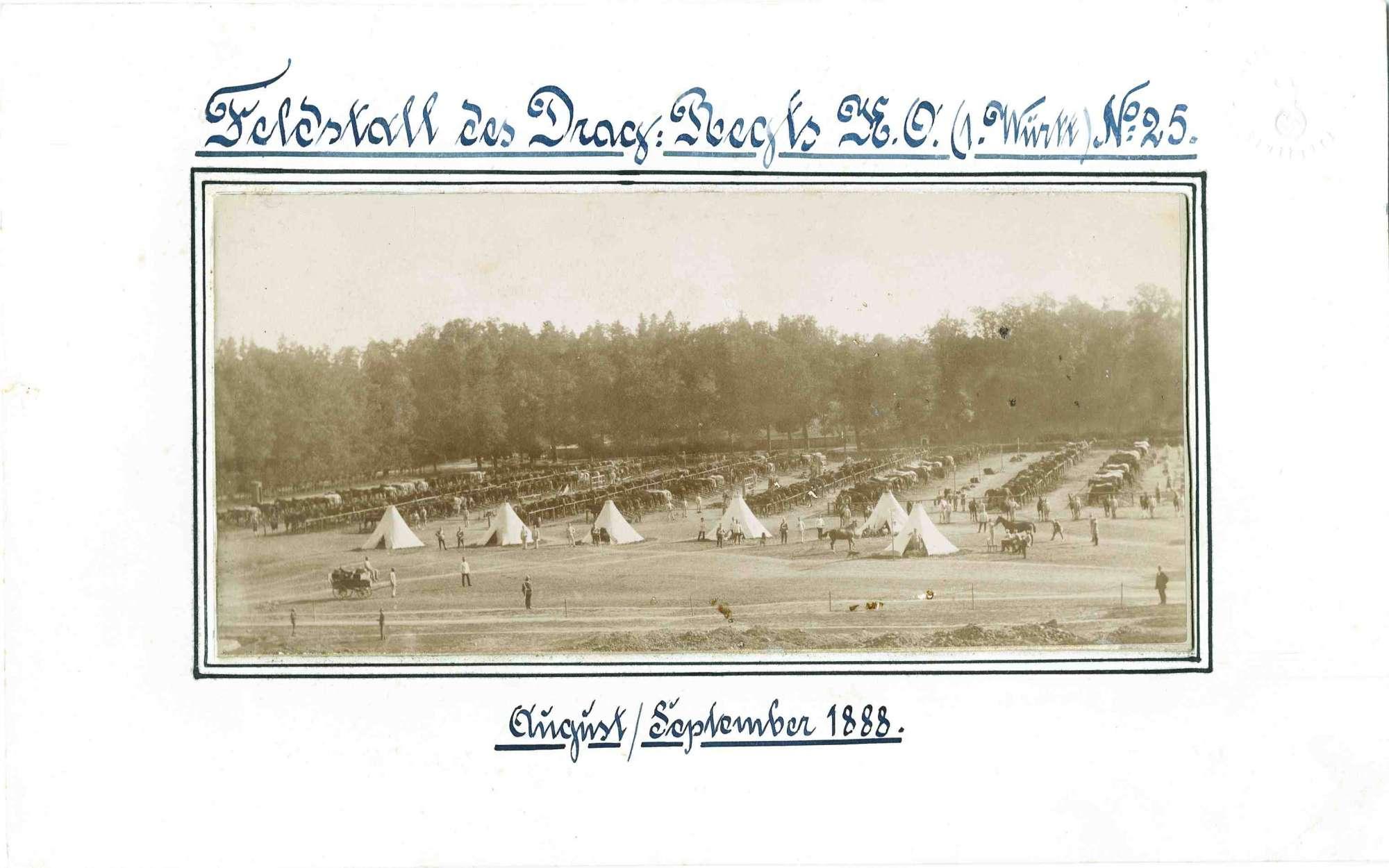Feldstall des Regiments der Garnison Ludwigsburg: Pferde in Boxen im Freien stehend, im Vordergrund Zelte, Bild 1