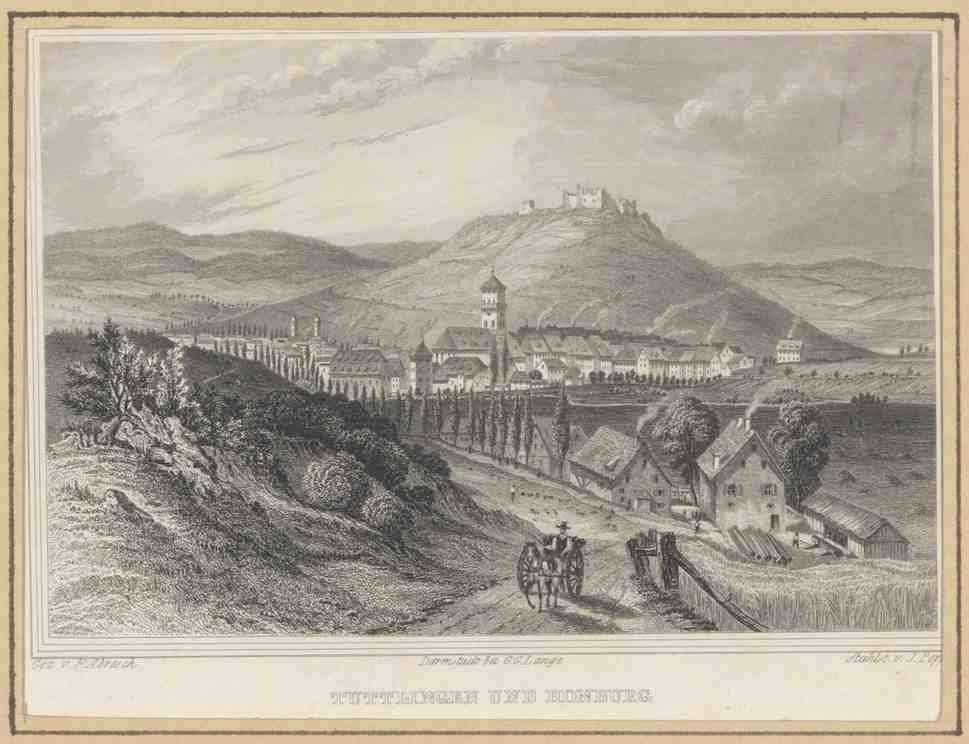 Tuttlingen und im Hintergrund die Honburg, Höhensicht, Bild 1