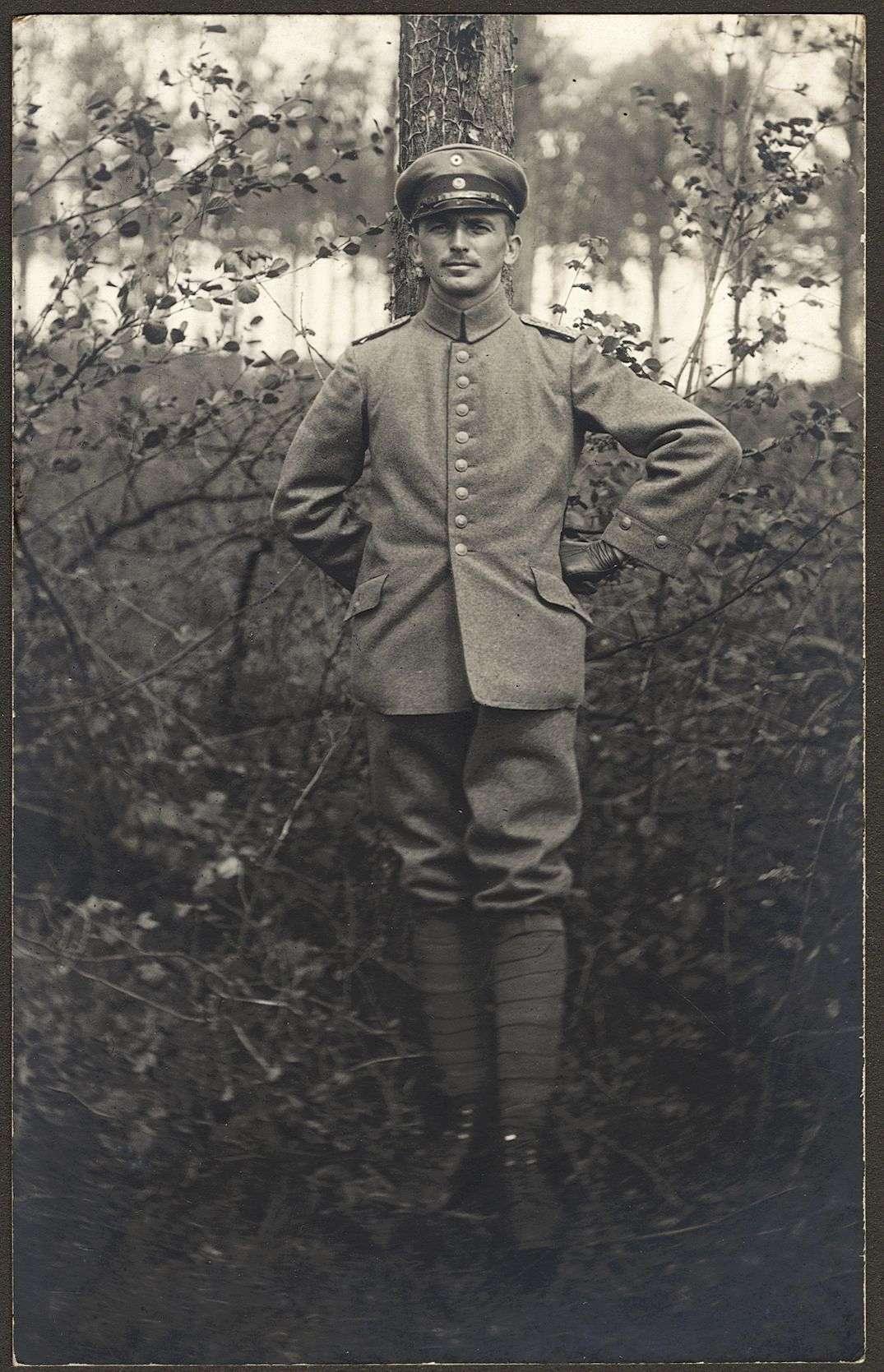 Dittus, Hermann, Bild 2