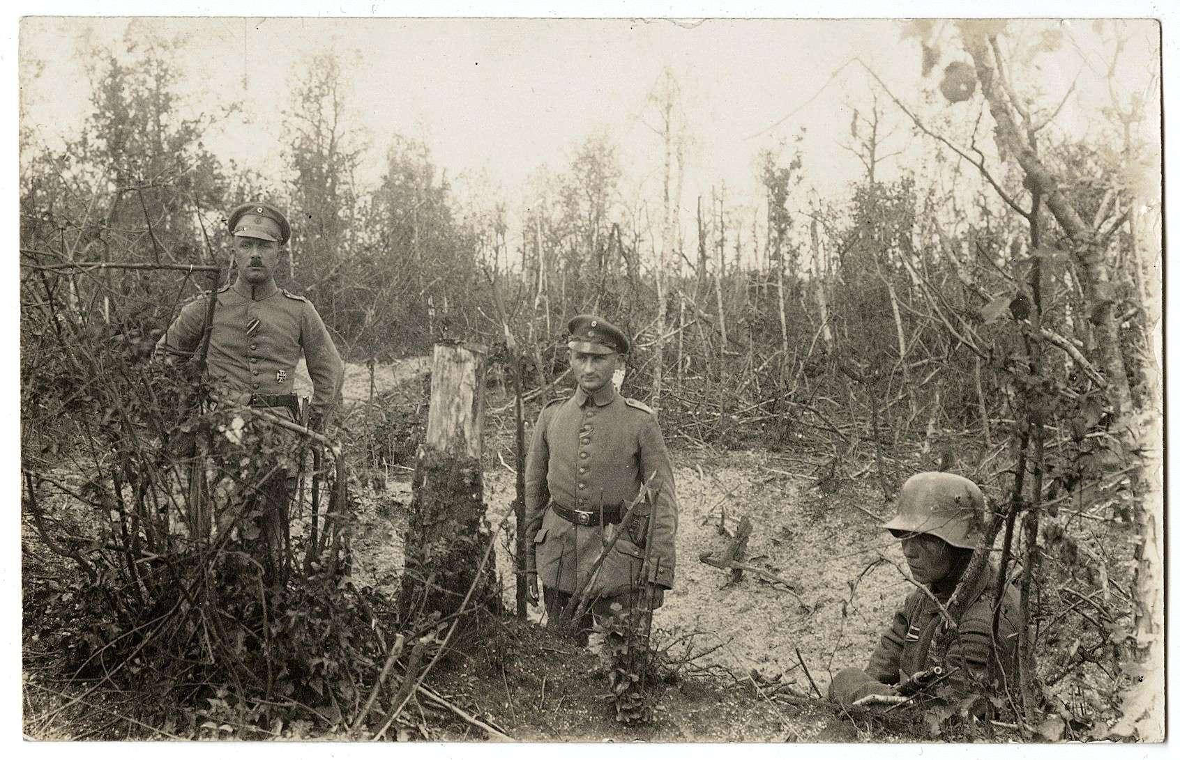 Häfner, Wilhelm, Bild 2