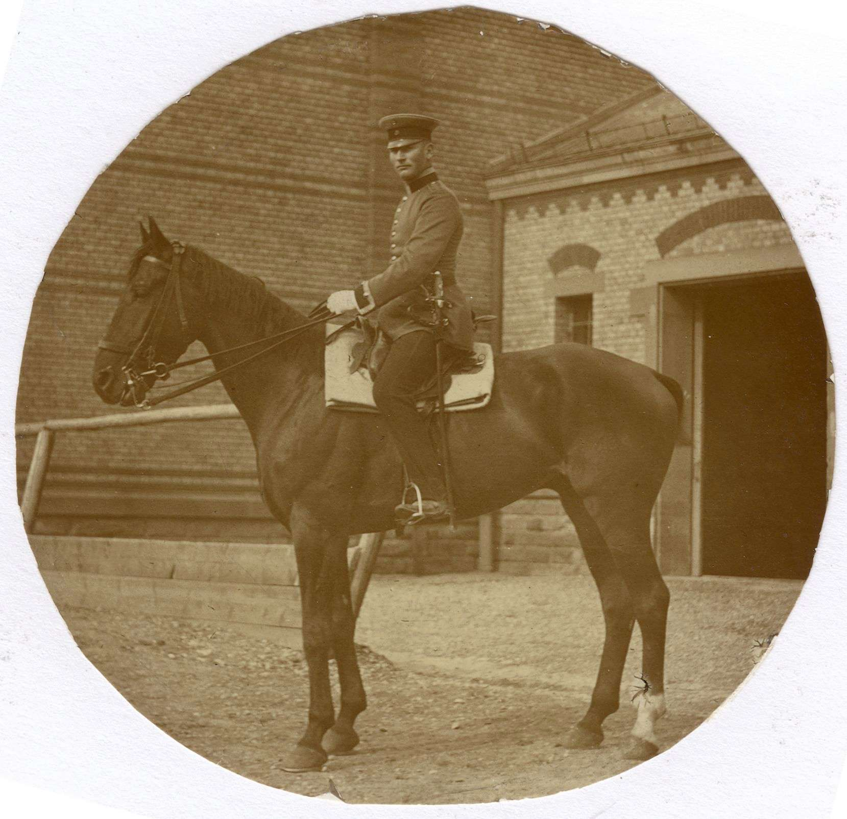 Haug, Eberhard, Bild 3