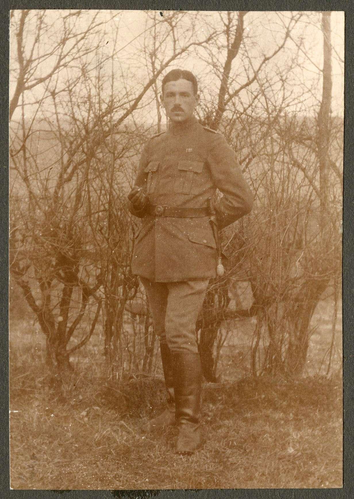 Schöllhammer, Hermann, Bild 1