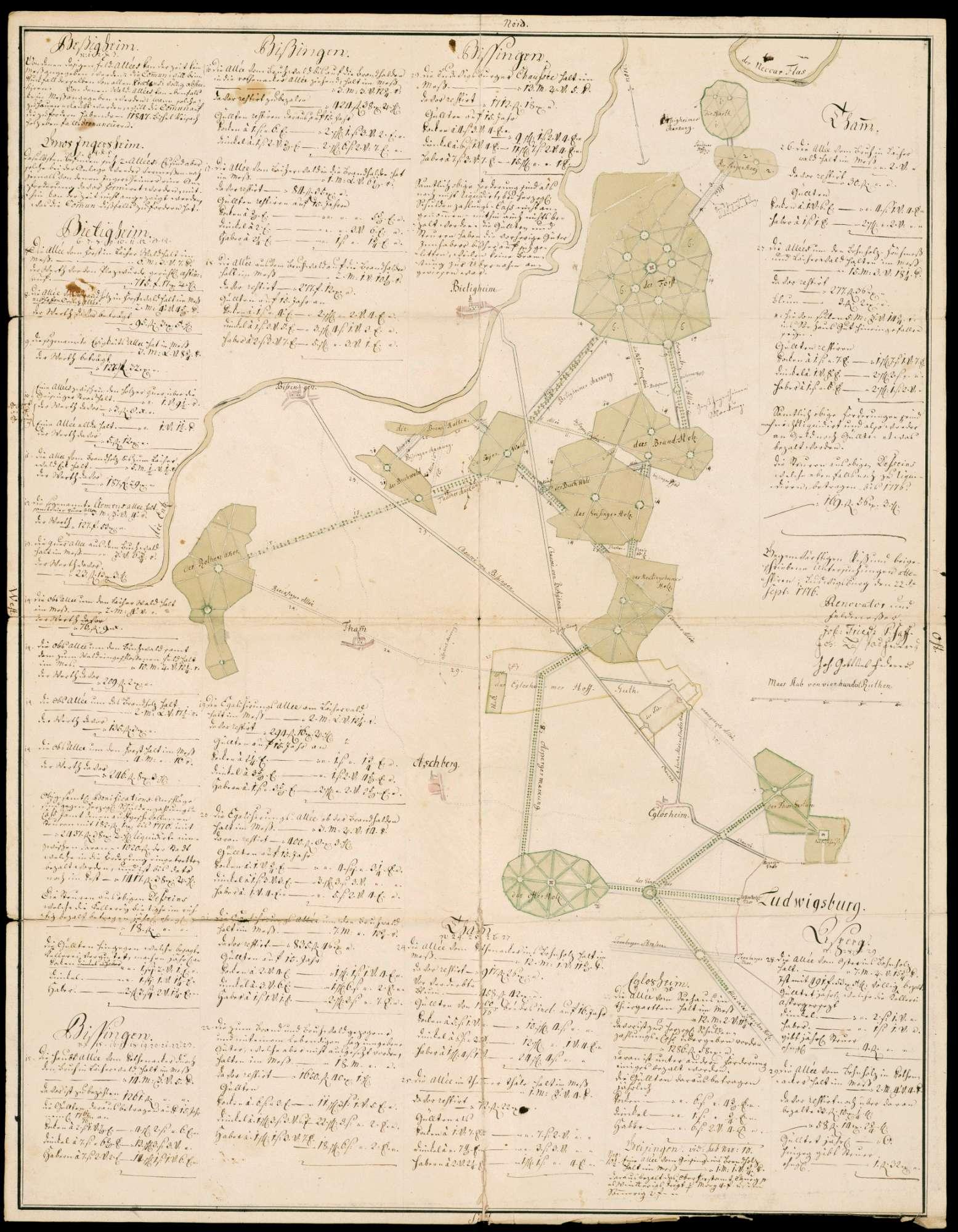 [Plan der zwischen Ludwigsburg, Bietigheim und Bissingen gelegenen Alleen und der Weganlagen in den Holzungen und Forsten], Bild 1