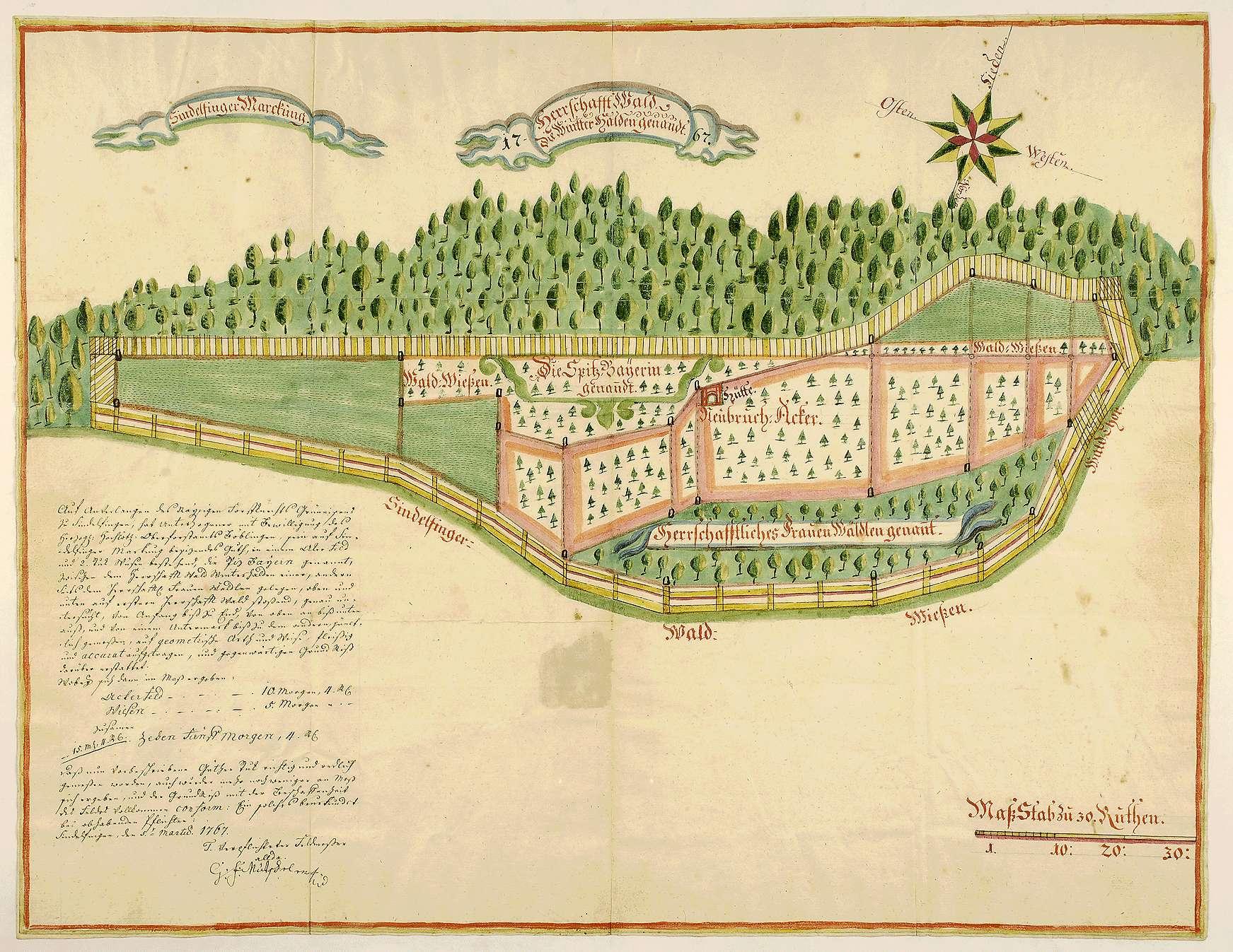 """""""Grundriss vom Herrschaftswald, die Wintterhalden genannt"""" [in Sindelfingen], Bild 1"""