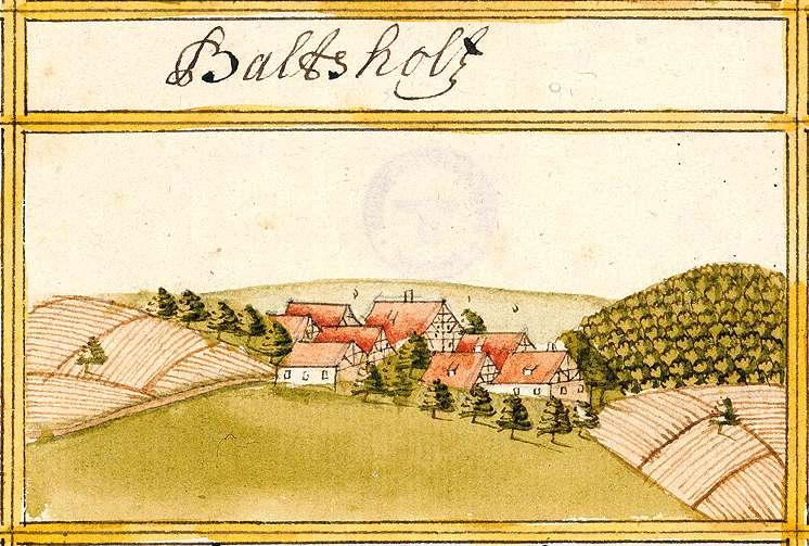 Balzholz ES, Bild 1