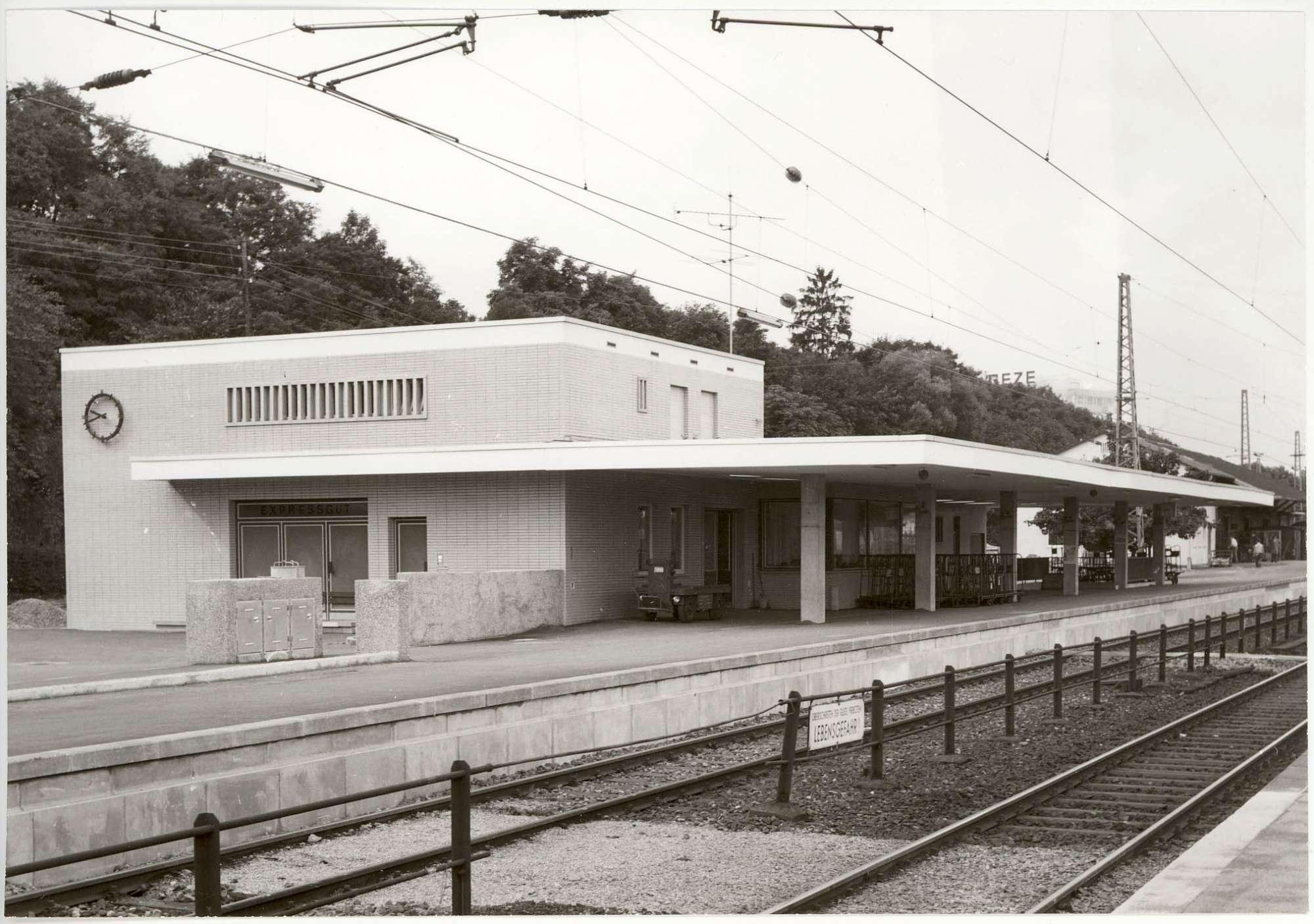 Leonberg: 1 Foto u.a., Bild 1