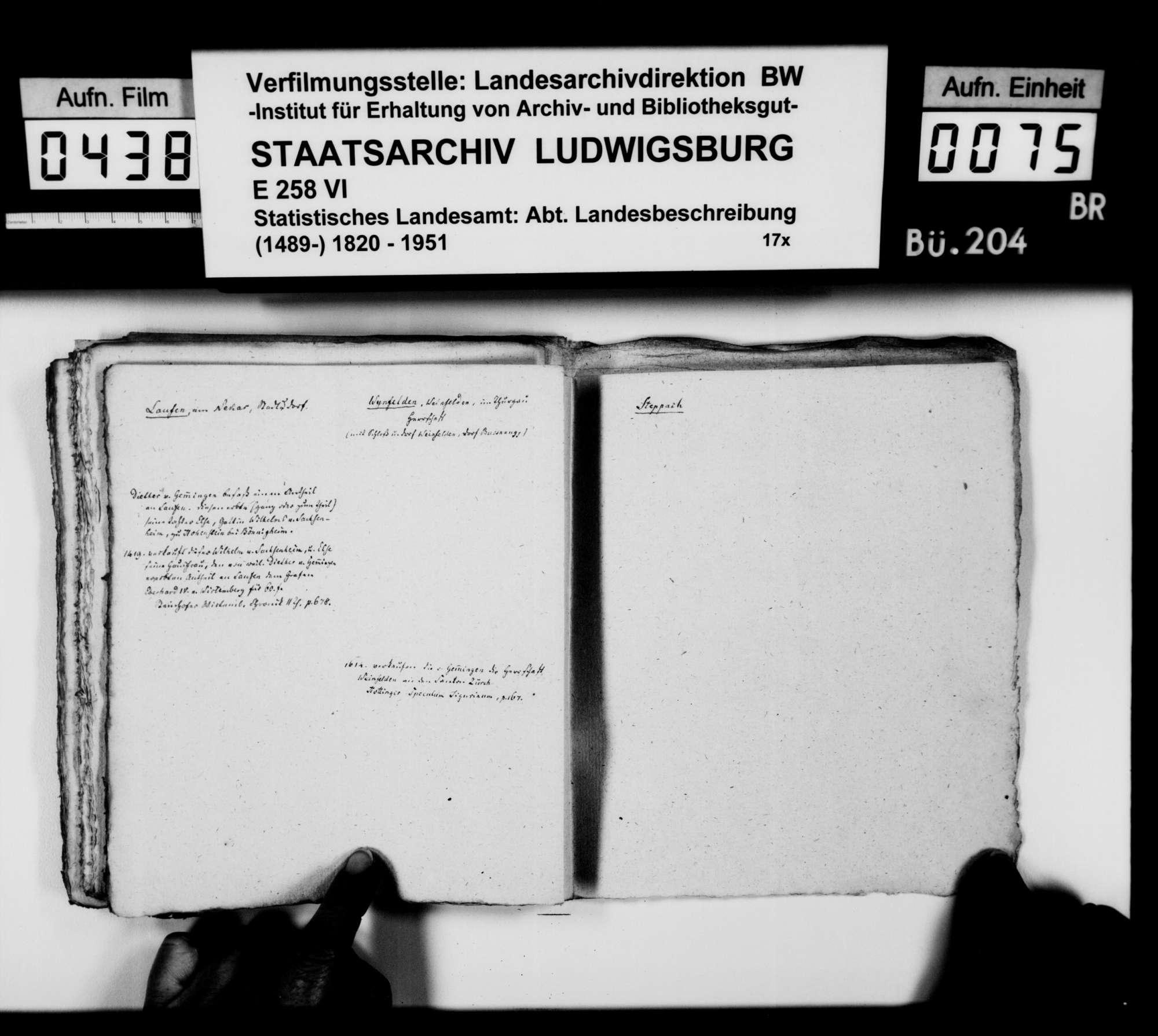 Materialsammlung des Karl von Alberti: Kollektaneen zur Geschichte der freiherrlichen Familien von Adelsheim und von Gemmingen, Bild 1
