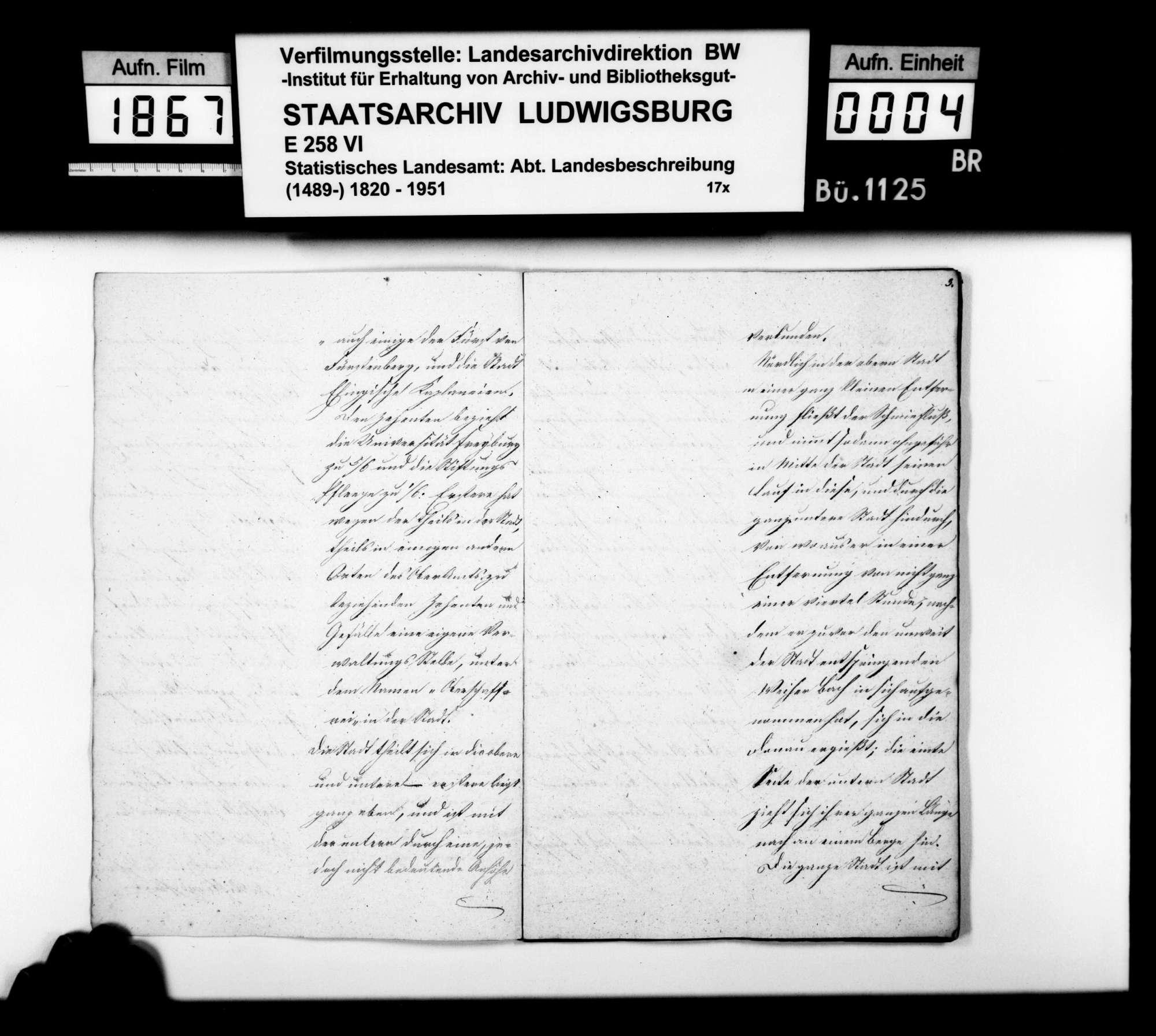 Abhandlung des Schultheißen Vogt zur Oberamtsstadt Ehingen, Bild 3