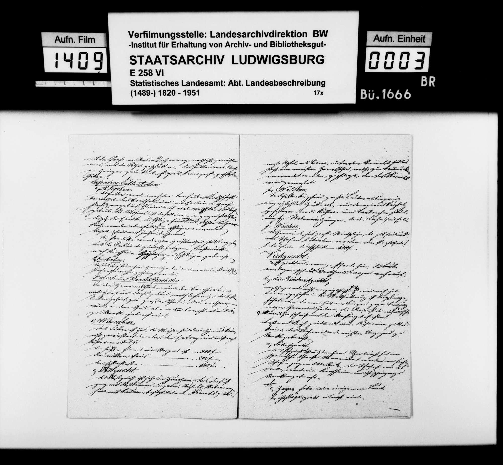 Notizen zur Beschreibung von Reichenbach mit Siegenberg nach dem Fragenkatalog des STBs (wie oben bei Bezgenriet), Bild 2
