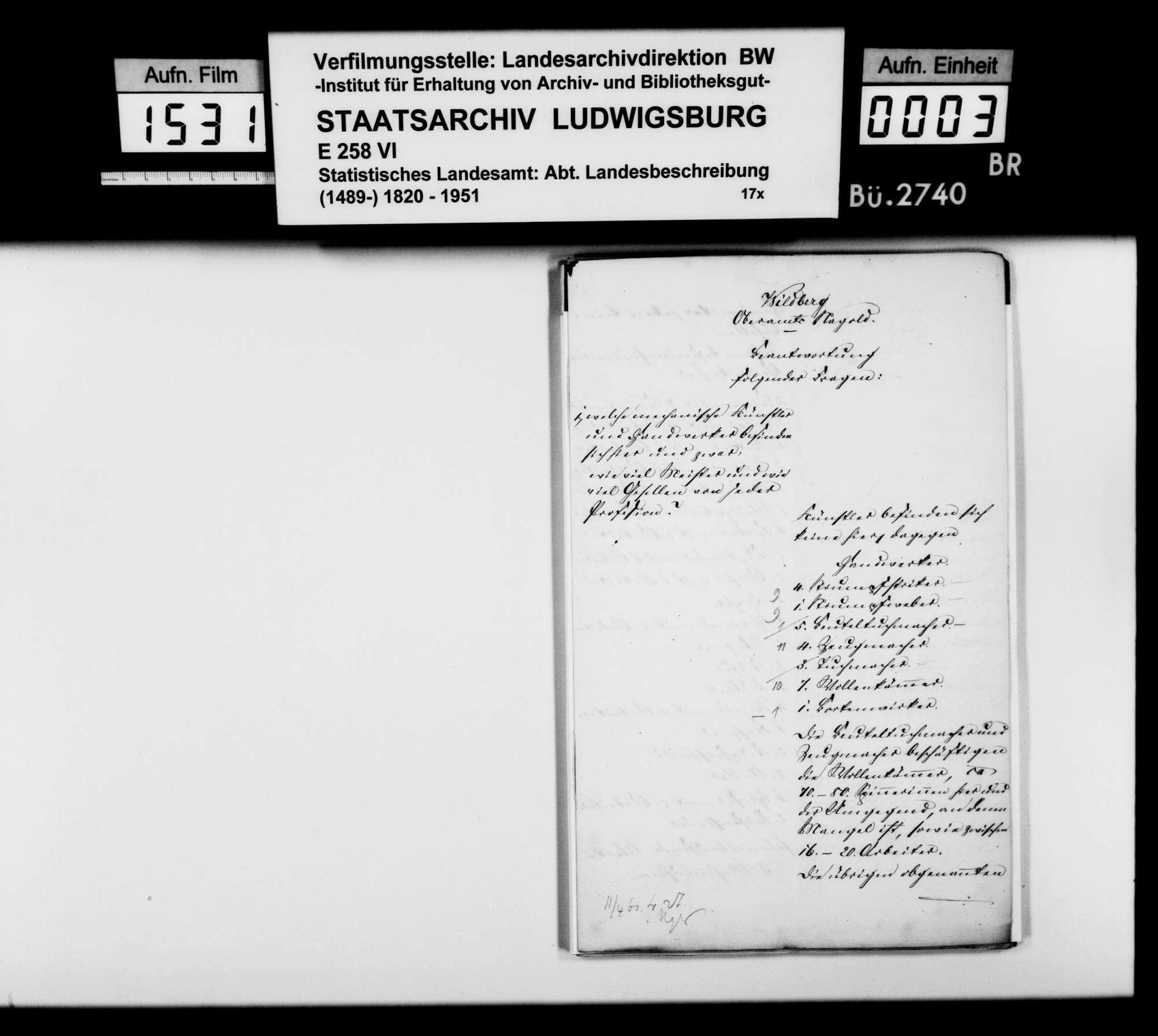 Gewerbestatistik des Oberamts und der Stadt Wildberg sowie Stiftungen in Wildberg, Bild 2