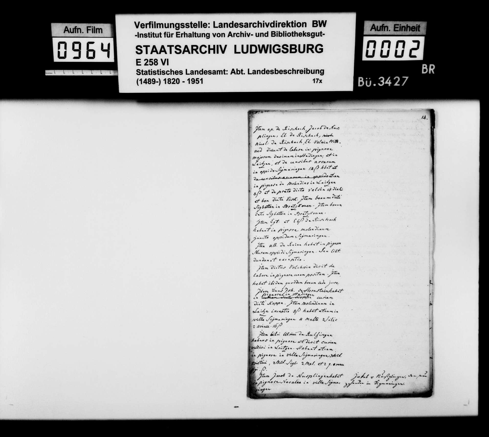 Abschriften und Auszüge [der Kanzlei des STBs] zur mittelalterlichen Adels- und Besitzgeschichte im Oberamtsbezirk und Umgebung, Bild 1