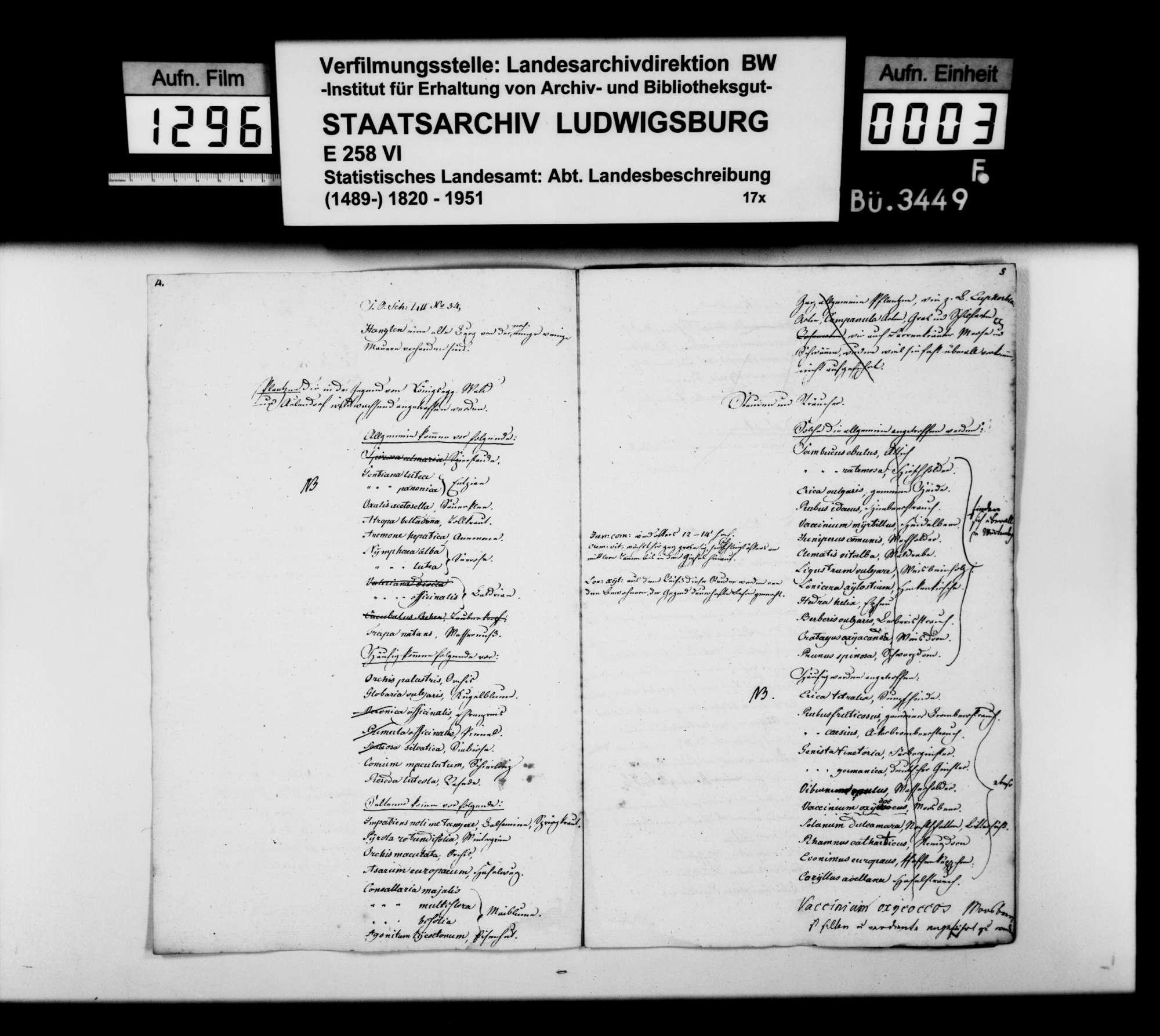Topographische Notizen zum Atlasblatt Aulendorf und eine botanische Liste, Bild 2