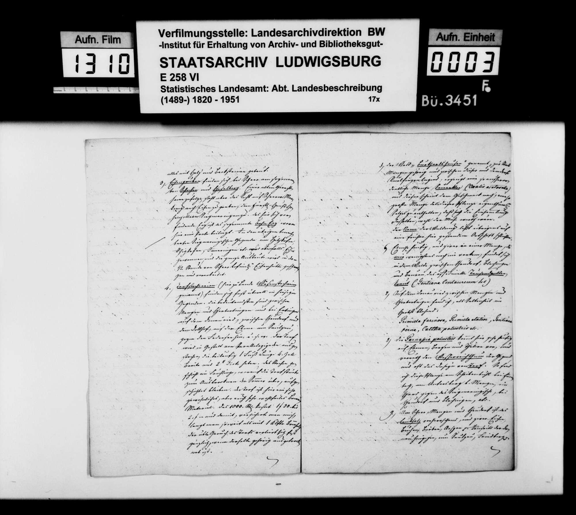 Topographische Bemerkungen aus den Donaugegenden um Scheer, Mengen und Saulgau, von Trigonometer Diezel, Bild 2