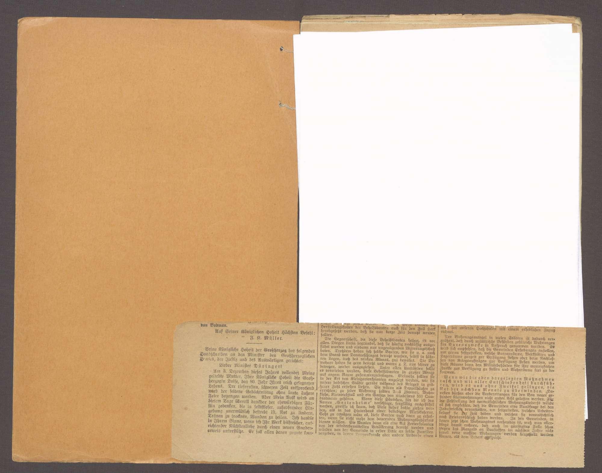 Der außerordentliche Landtag von 1918, der Umsturz in Baden und die verfassungsgebende Nationalversammlung, Bild 2