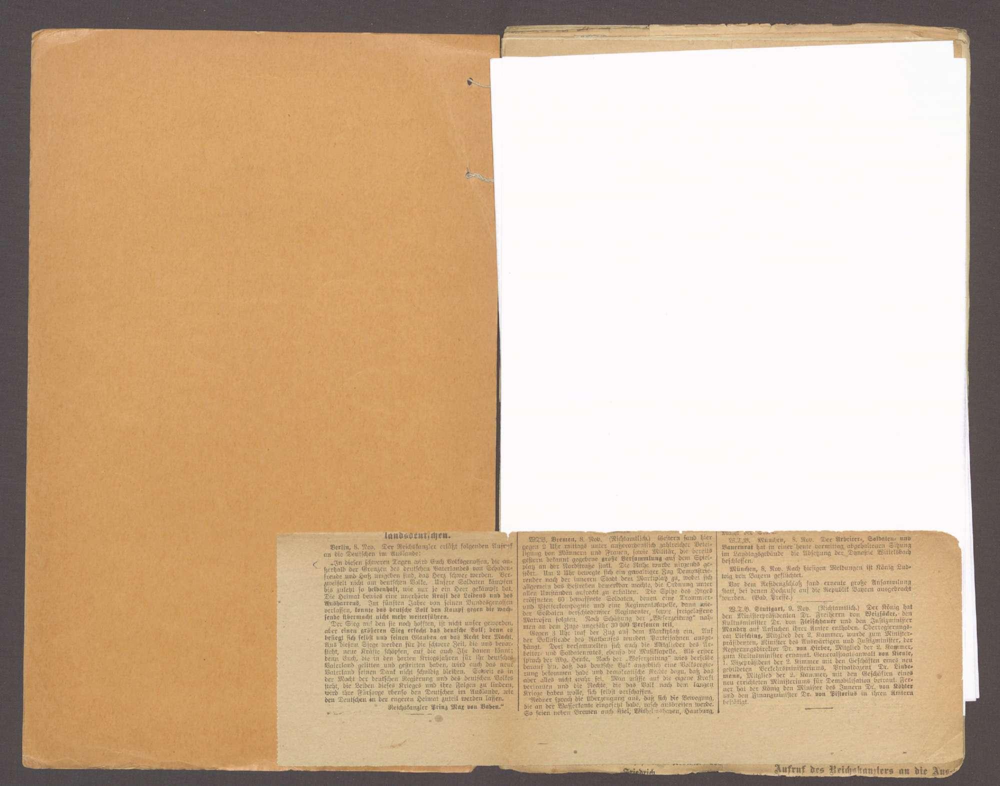 Der außerordentliche Landtag von 1918, der Umsturz in Baden und die verfassungsgebende Nationalversammlung, Bild 3