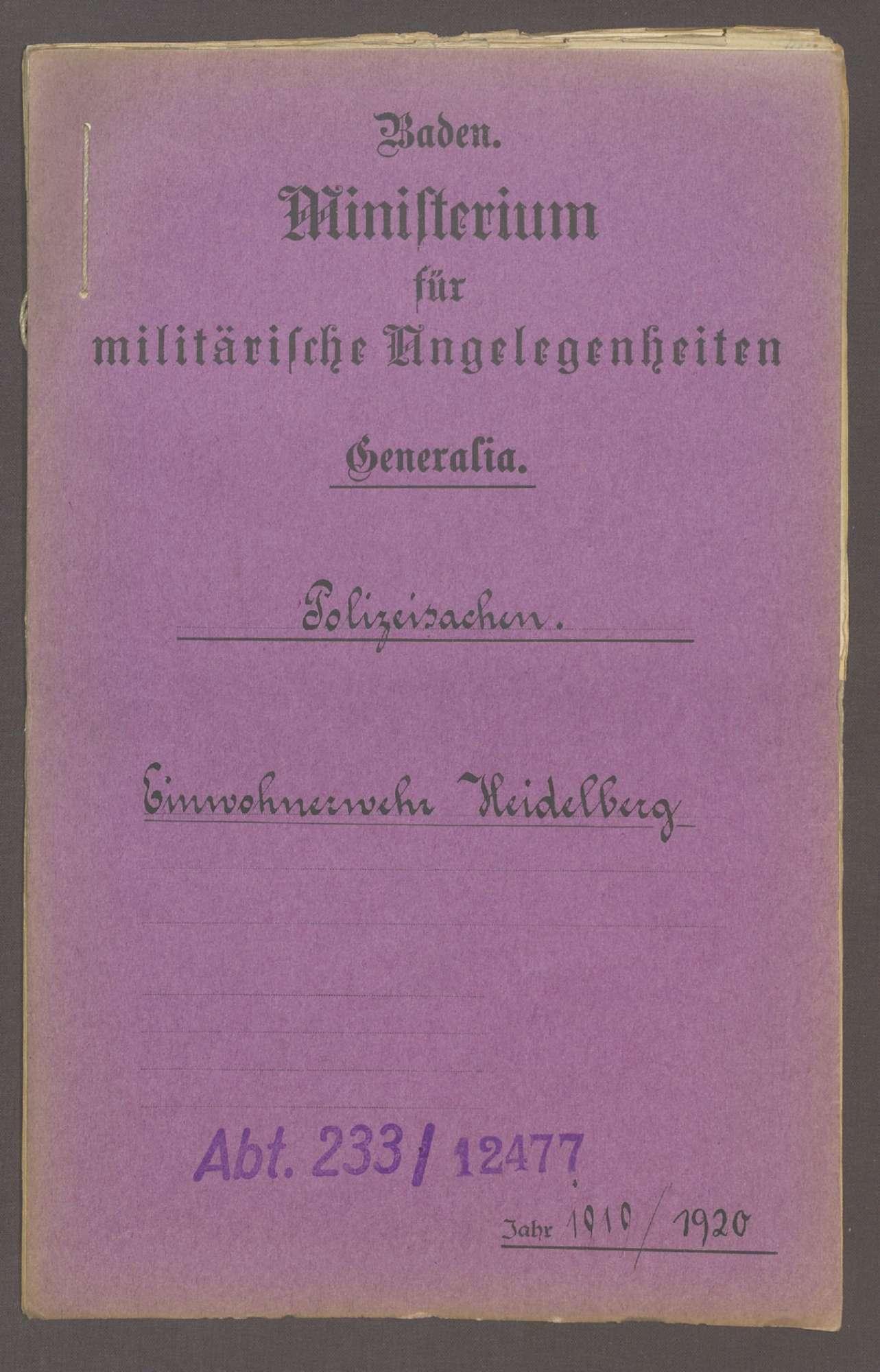 Die Einwohnerwehr in Heidelberg, Bild 1