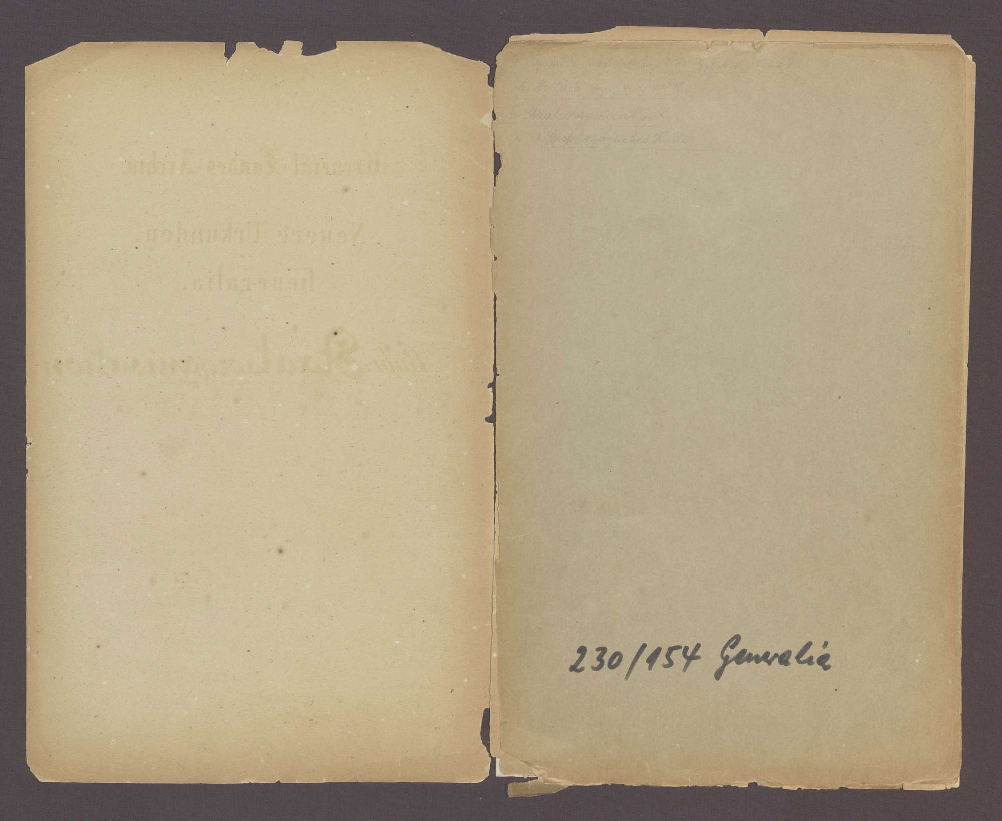 Urkunde über den Thronverzicht Seiner Königlichen Hoheit des Großherzogs Friedrich und Seiner Großherzoglichen Hoheit des Prinzen Max von Baden (22. November 1918), Bild 2