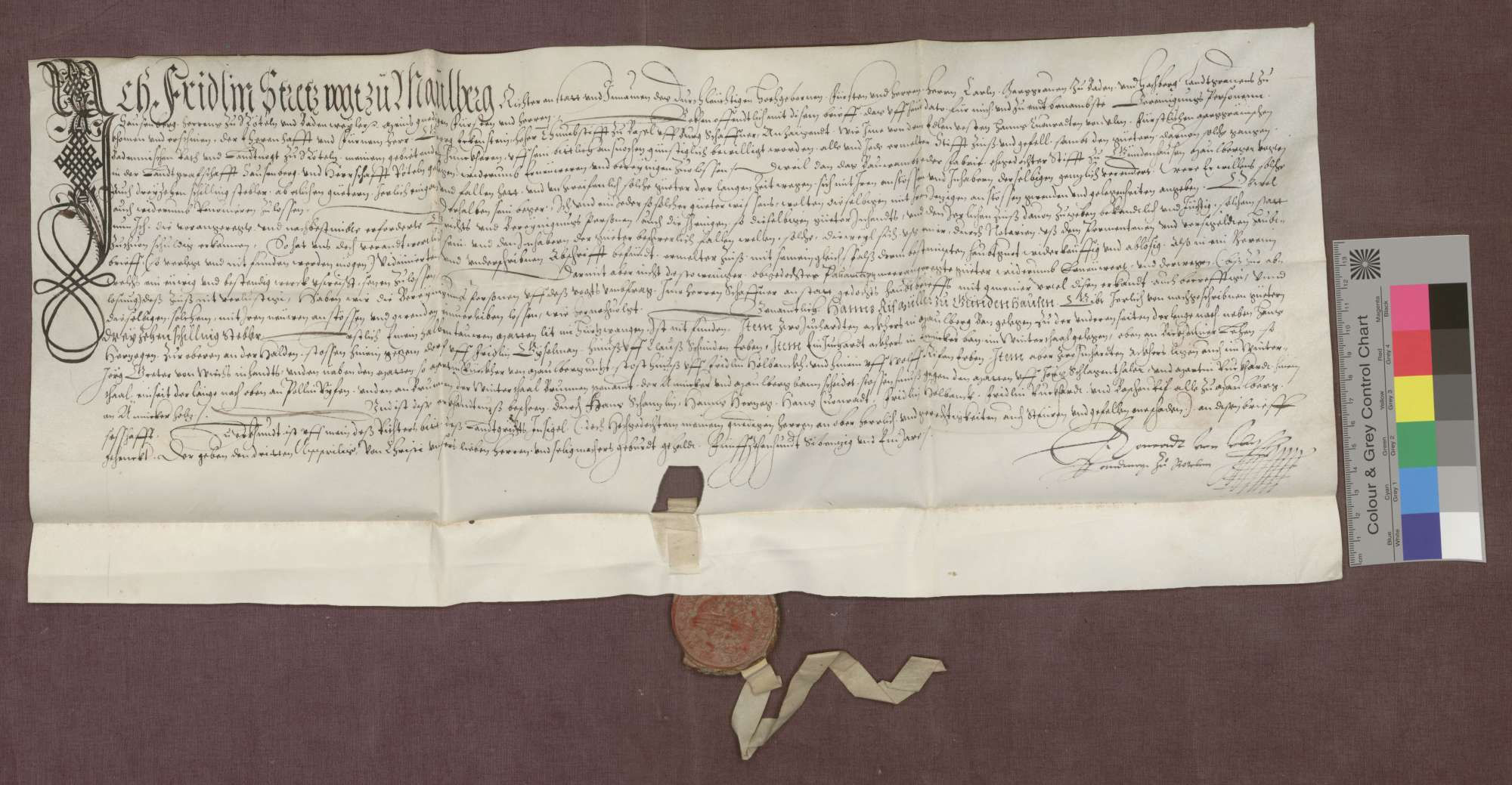 Berainbrief über die der Fabrik des Münsters zu Basel gehörigen Gülten und Güter zu Gündenhausen, ausgestellt vom Vogt zu Maulburg., Bild 1