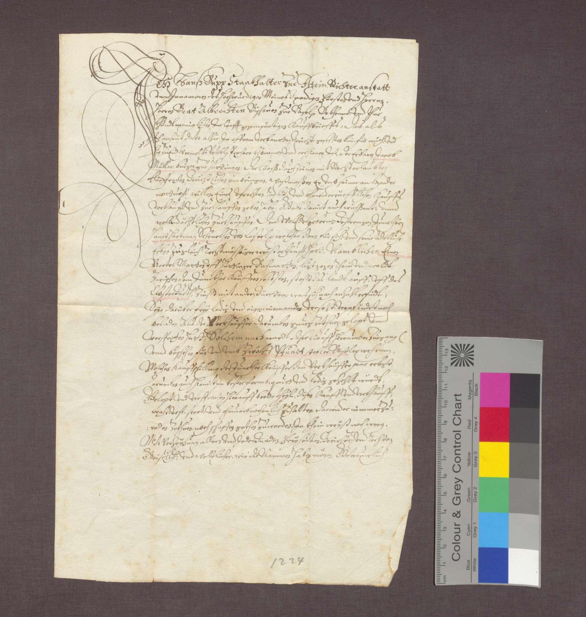 Jakob Müller zu Huttingen verkauft eine Wiese an Hans Hartmann Schenk von Castell., Bild 1